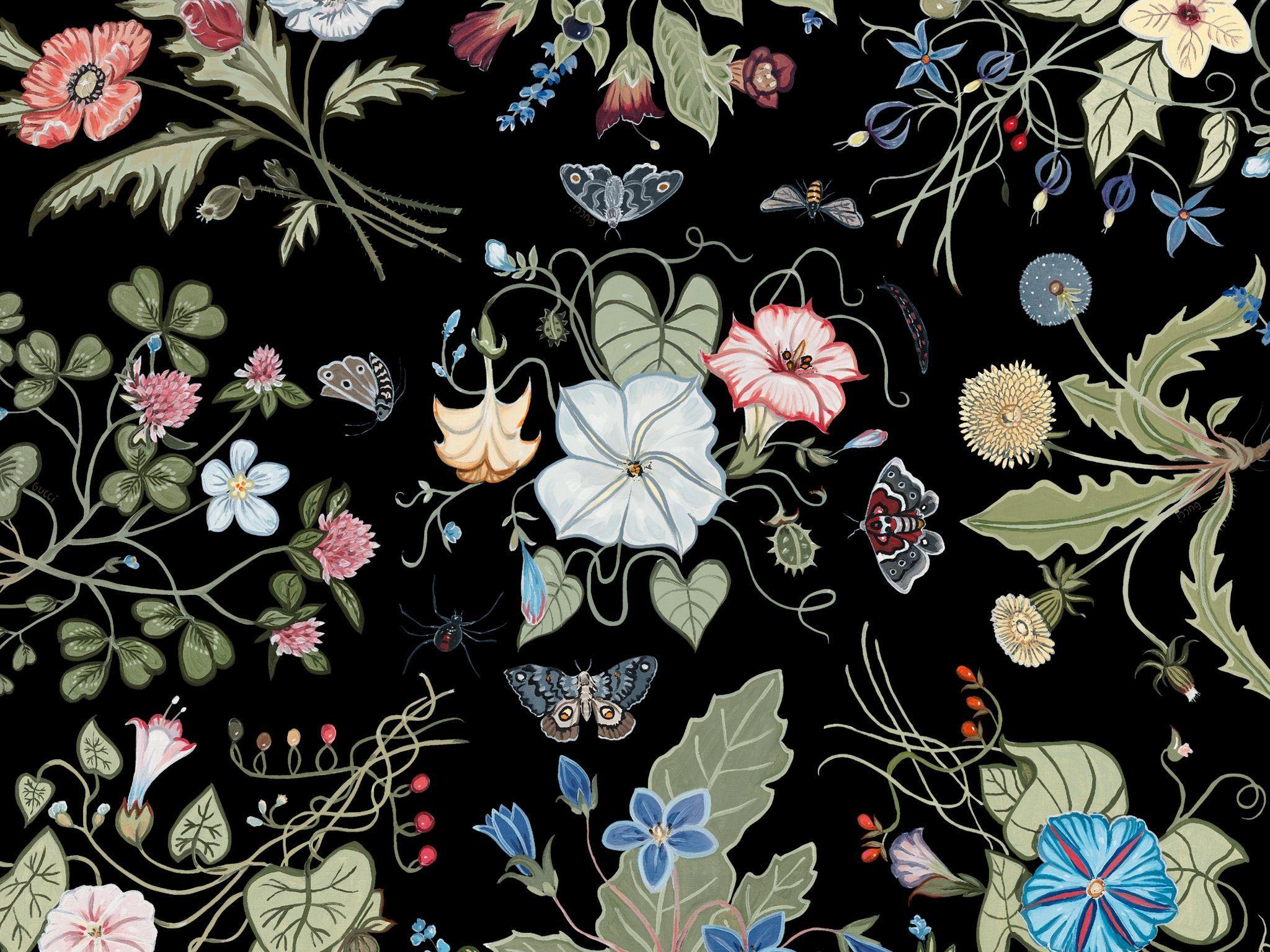 Gucci desktop wallpapers top free gucci desktop - Gucci desktop wallpaper ...