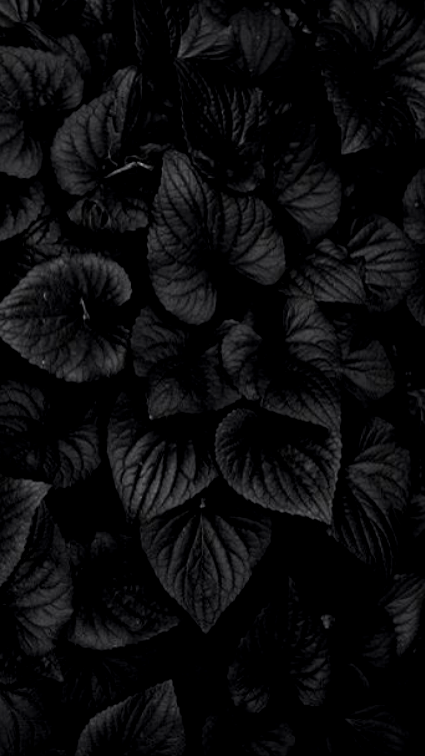 4k Black Wallpapers Top Free 4k Black Backgrounds