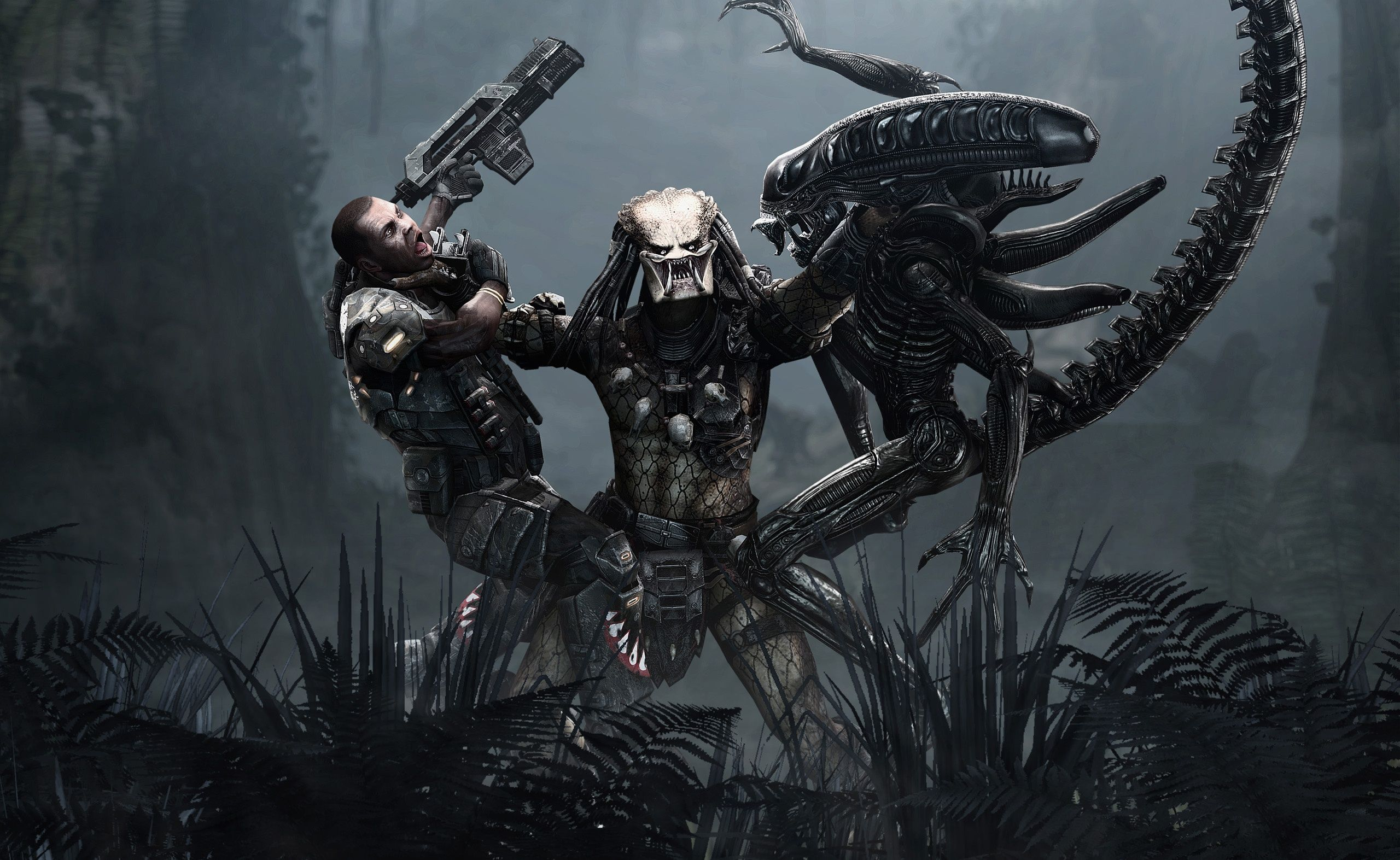 Alien Vs Predator Wallpapers Top Free Alien Vs Predator