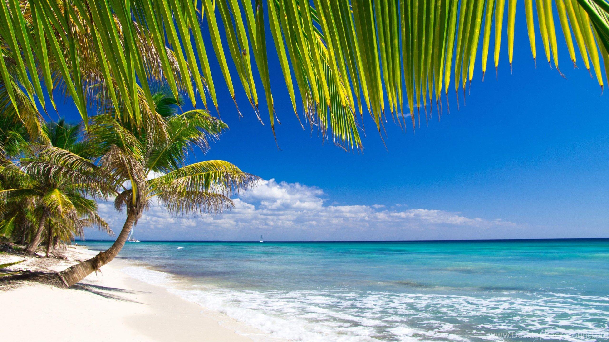 Caribbean Beach Wallpapers Top Free Caribbean Beach