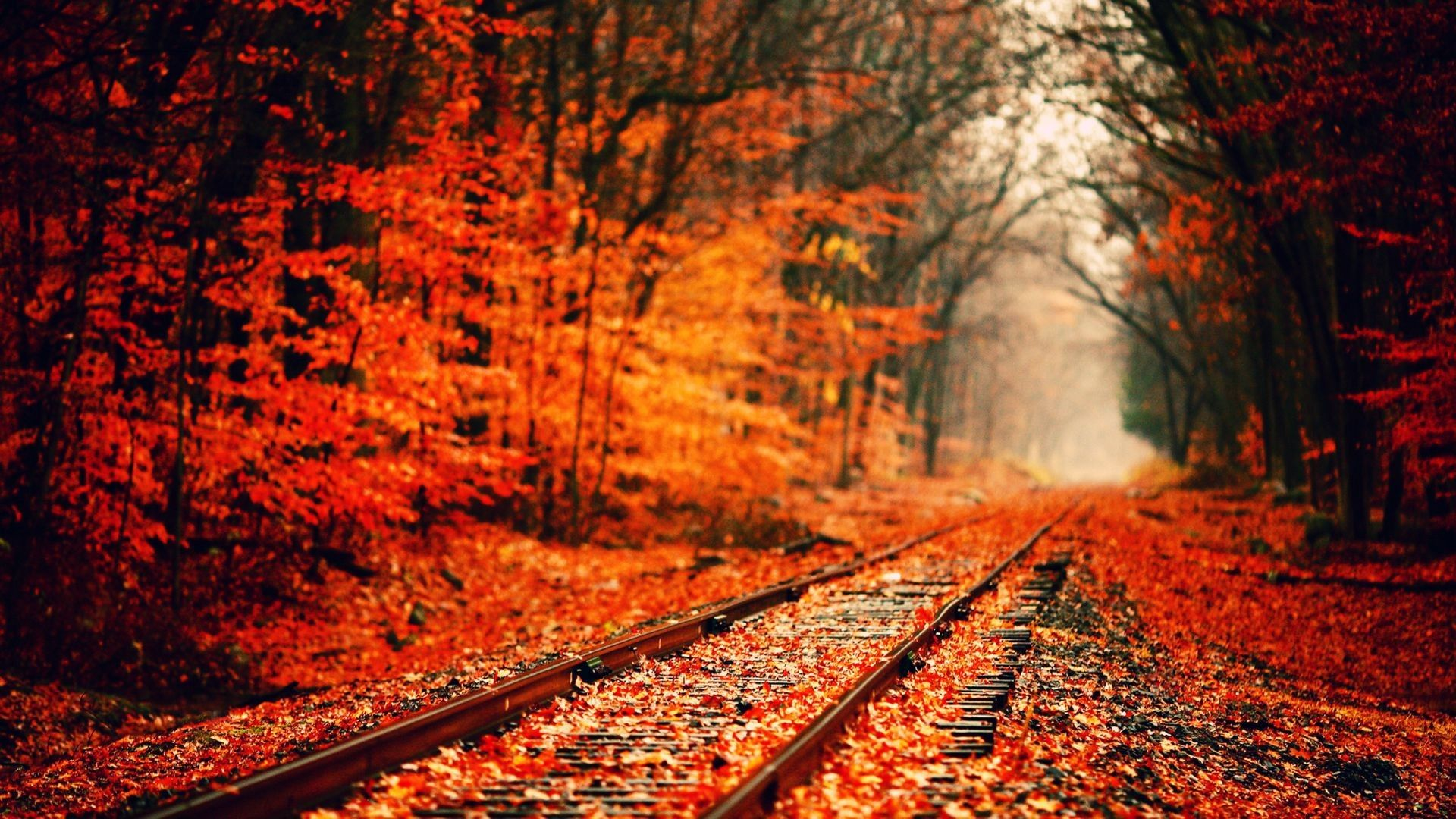 Fall Aesthetic Desktop Wallpapers Top Free Fall Aesthetic Desktop Backgrounds Wallpaperaccess