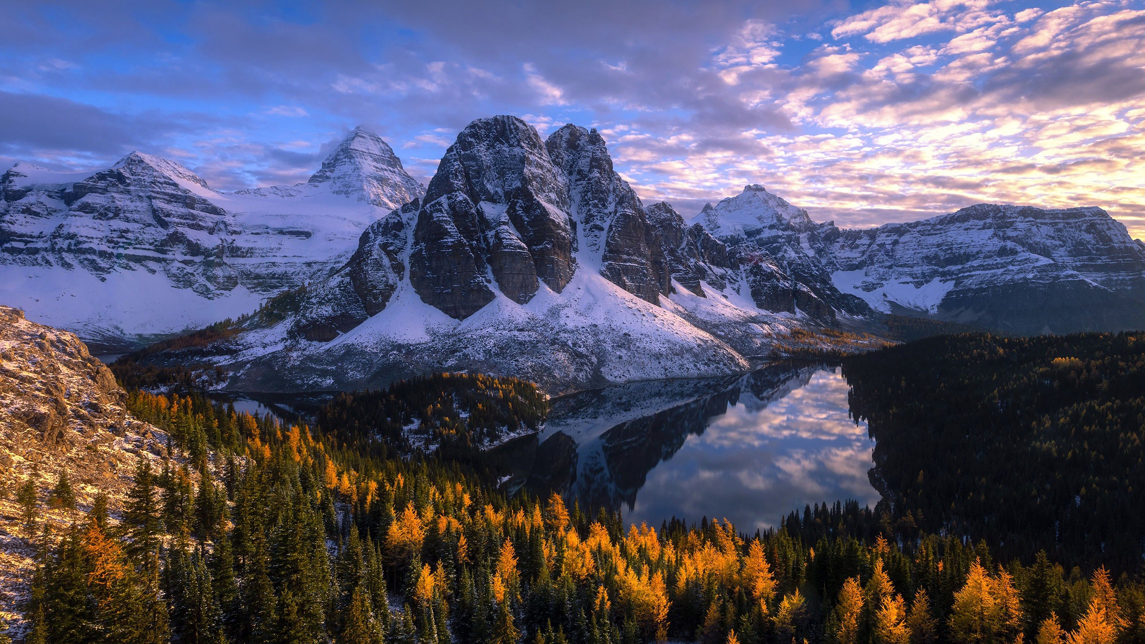 Mountain Forest 4K Wallpapers - Top Free Mountain Forest ...