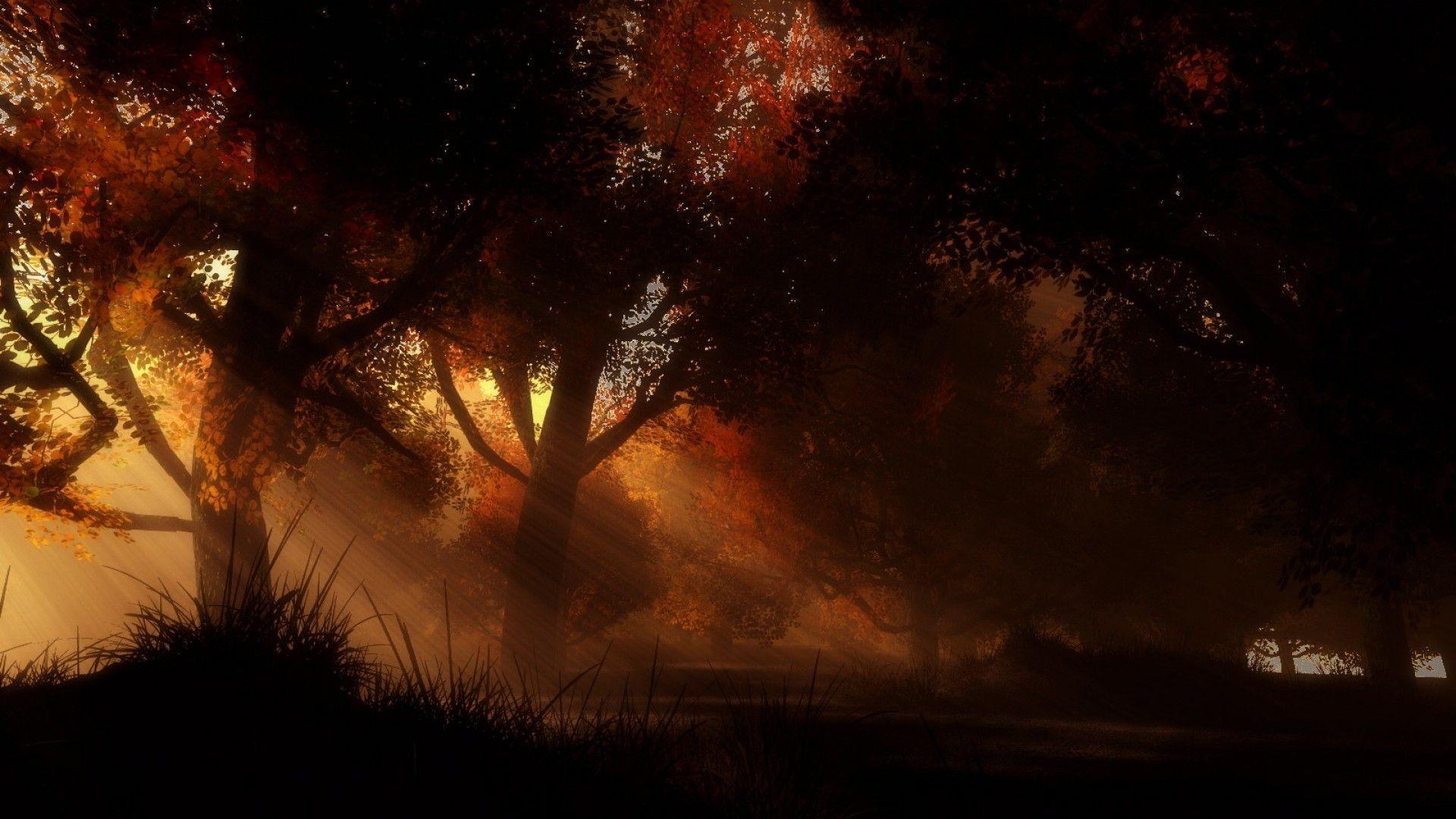 Dark Autumn Wallpapers Top Free Dark Autumn Backgrounds Wallpaperaccess