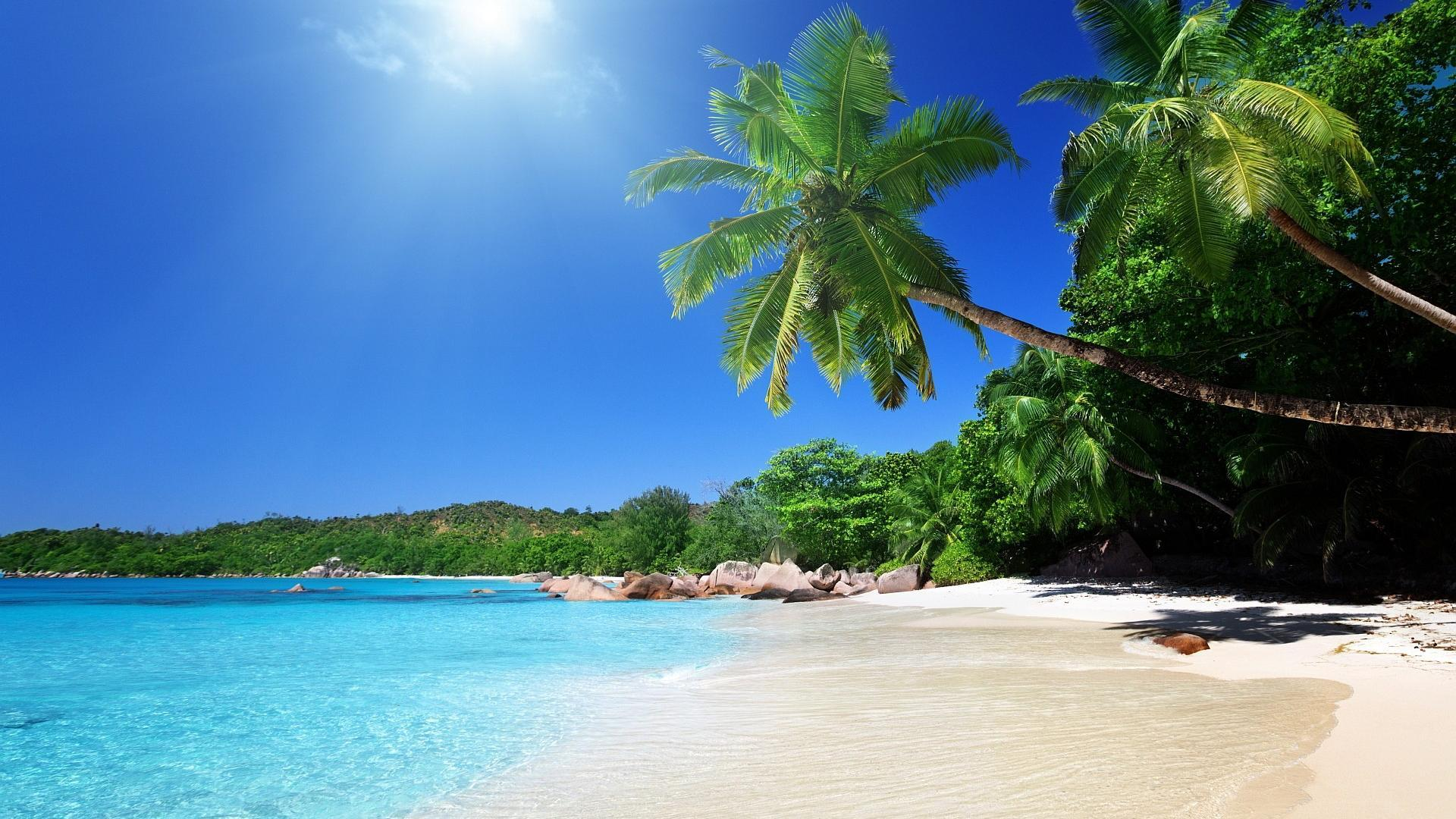 Tropical Scenes Wallpapers   Top Free Tropical Scenes Backgrounds ...