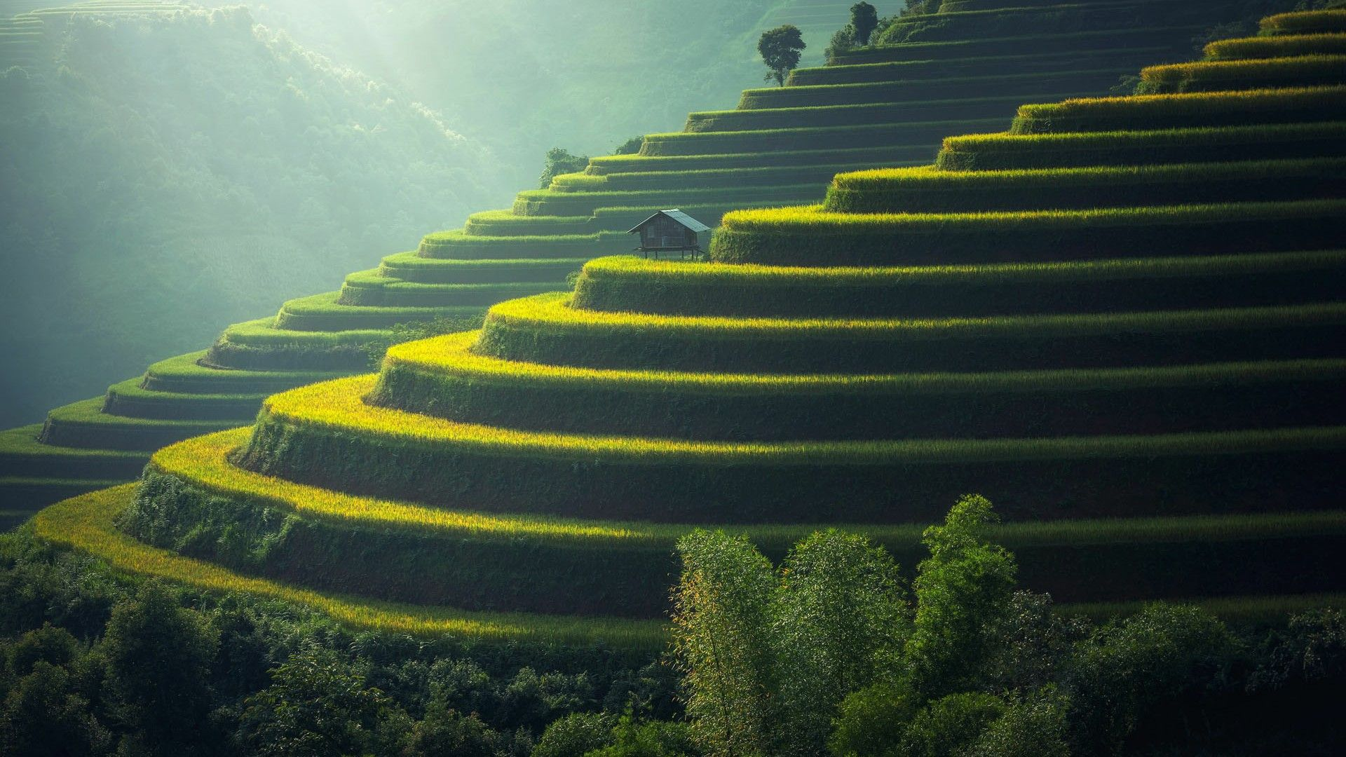 Bali Desktop Wallpapers Top Free Bali Desktop Backgrounds