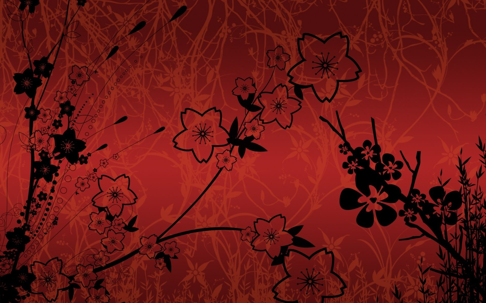 Chinese Flower Wallpapers Top Free Chinese Flower Backgrounds