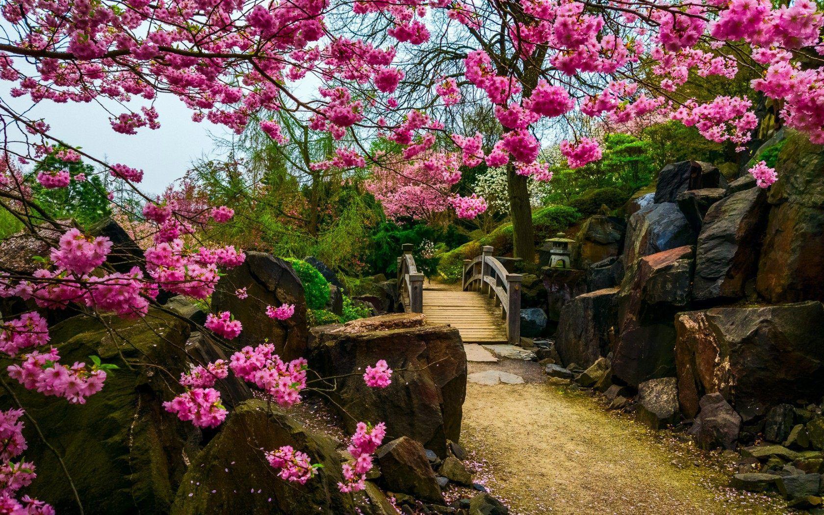 45 Best Free Japanese Garden Wallpapers