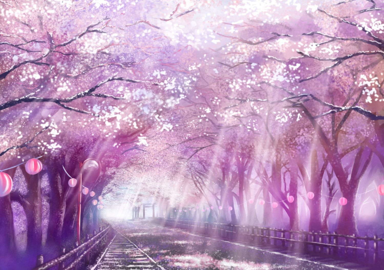 Cherry Blossom Tree Anime Wallpapers Top Free Cherry Blossom Tree Anime Backgrounds Wallpaperaccess