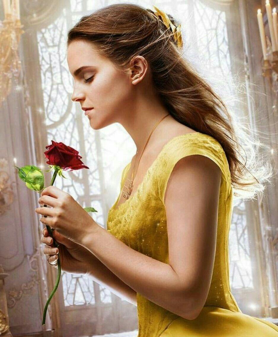 Belle Emma Watson Wallpapers Top Free Belle Emma Watson