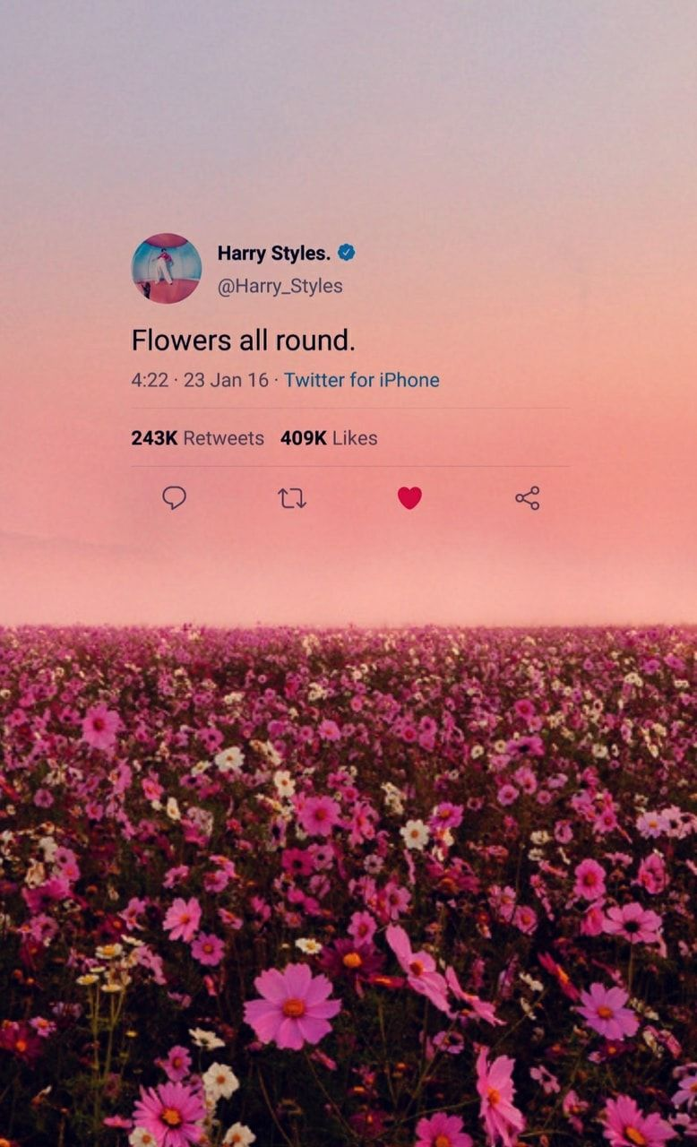 Harry Styles Aesthetic Wallpapers Top Free Harry Styles Aesthetic Backgrounds Wallpaperaccess