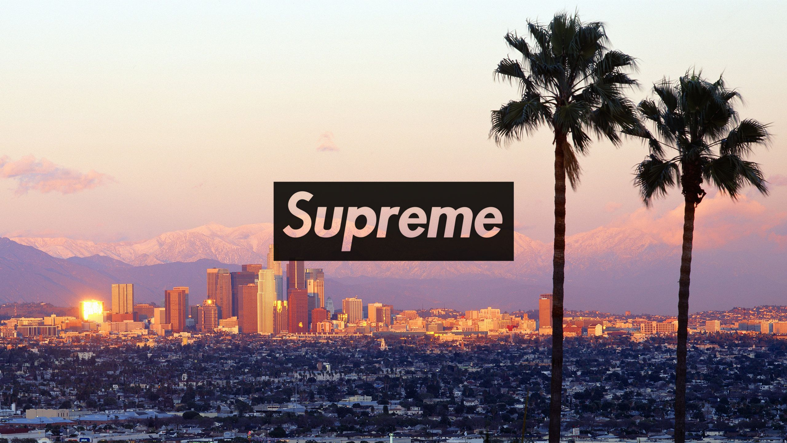 Supreme Desktop Wallpapers Top Free Supreme Desktop