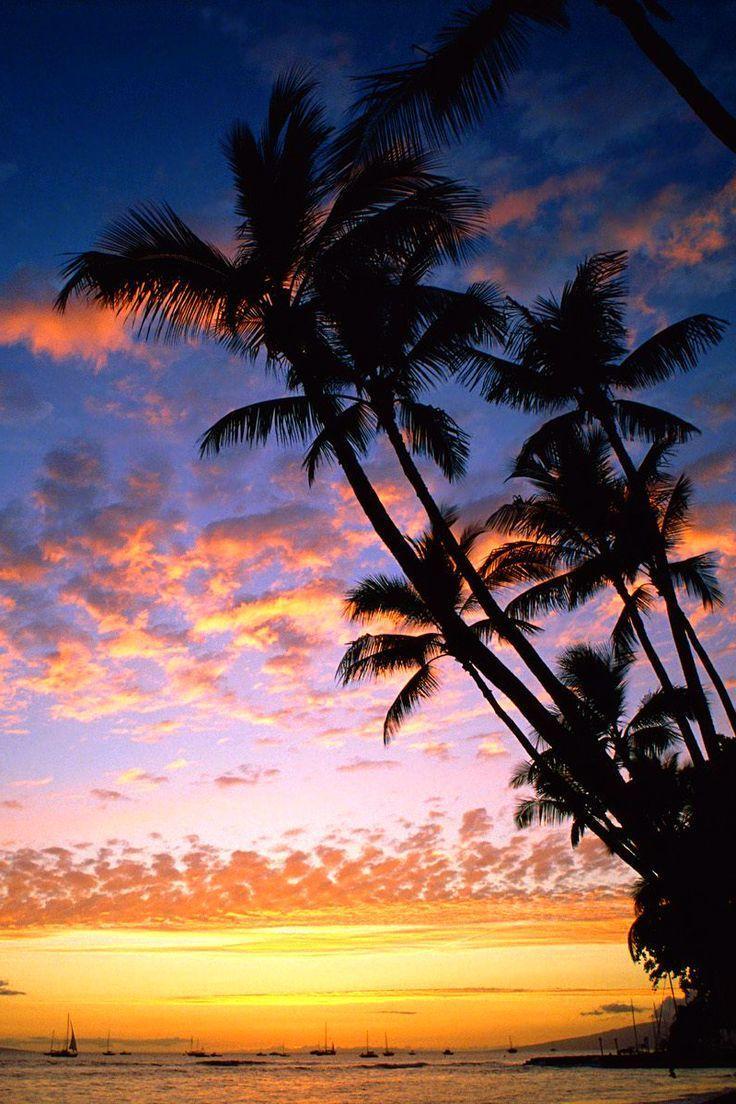 1125x2436 Hawaii IPhone X Wallpaper Download