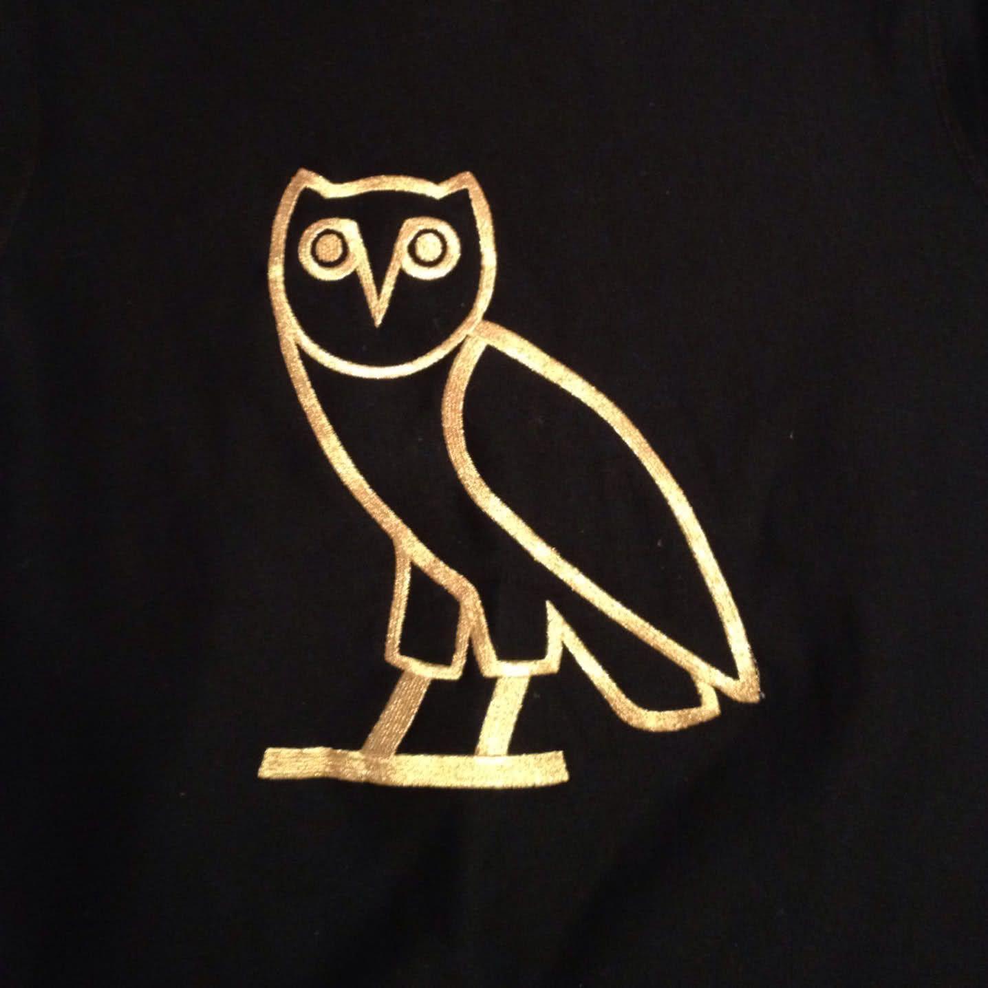 Drake Owl Wallpapers Top Free Drake Owl Backgrounds Wallpaperaccess