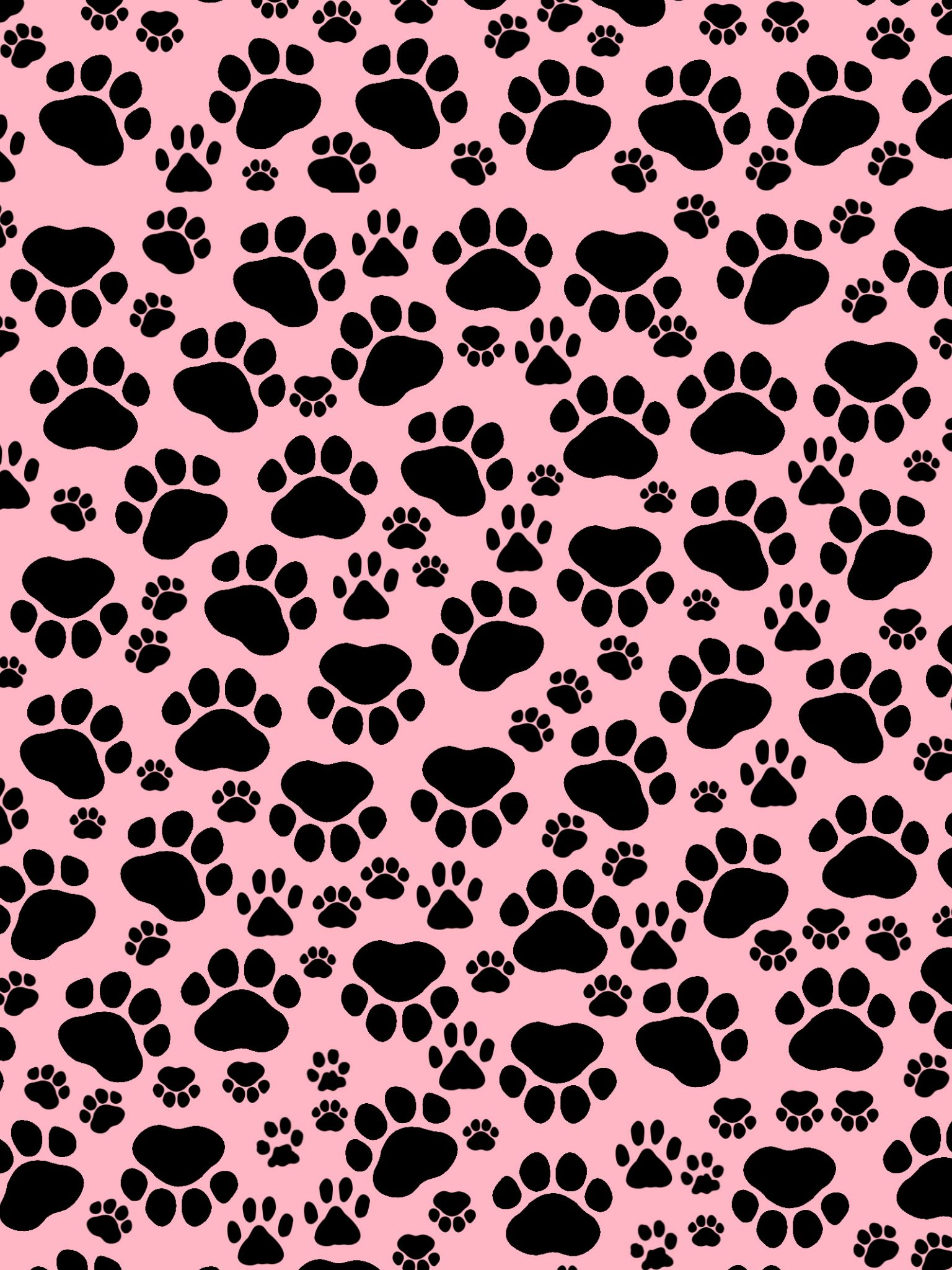 Black And Pink Wallpapers Top Free Black And Pink
