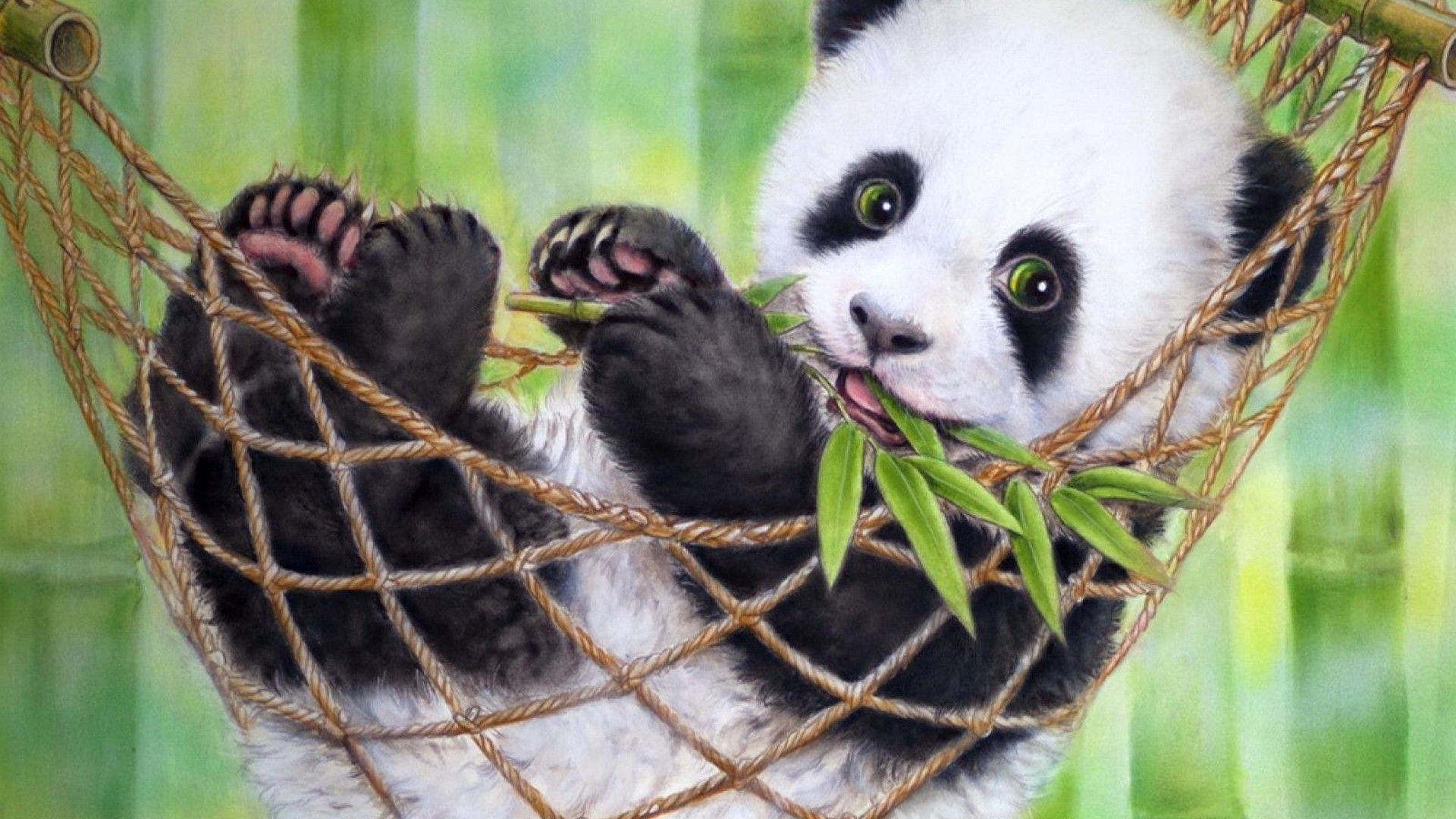 63 Best Free Panda Bear Wallpapers Wallpaperaccess