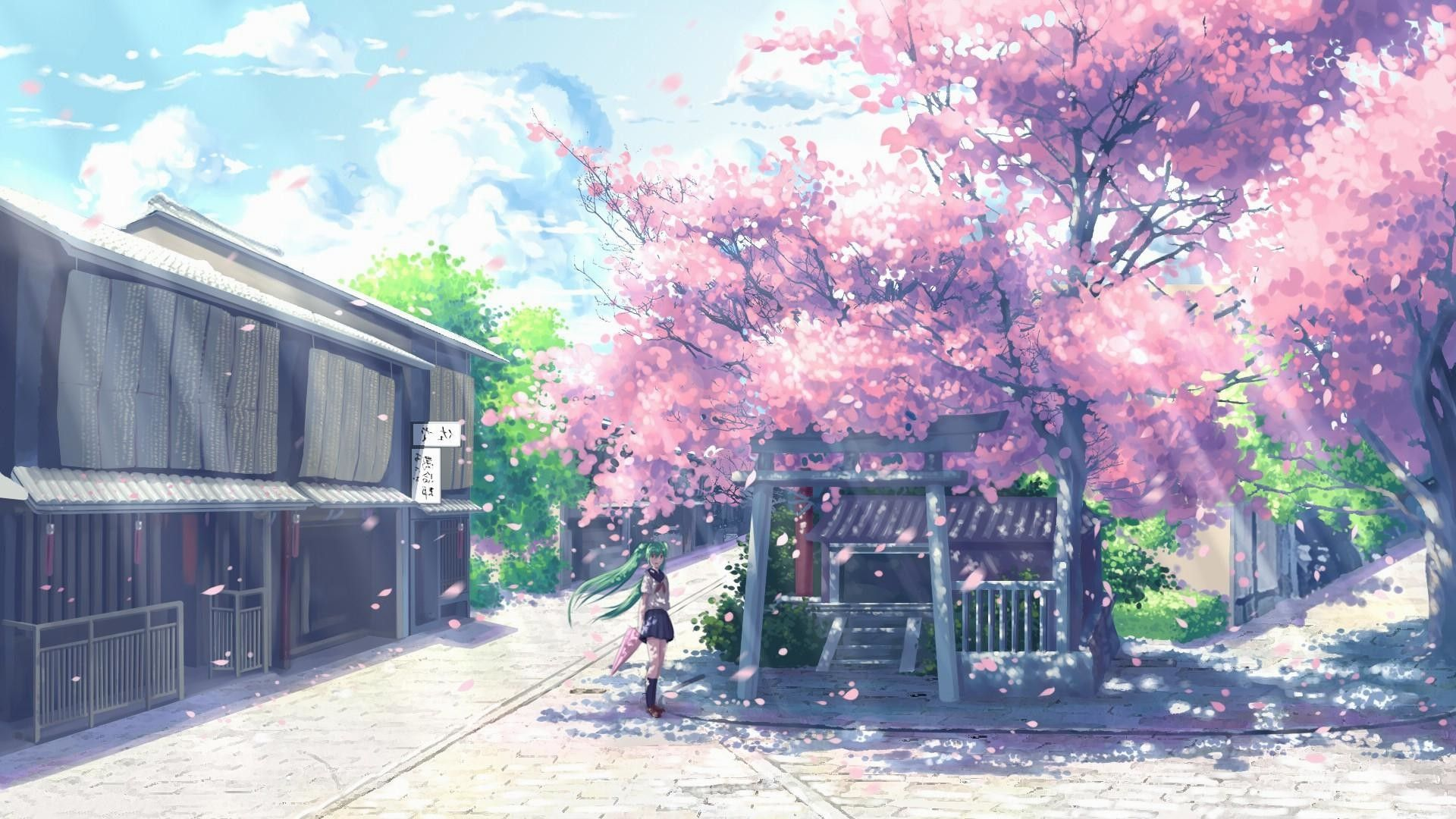 Anime Cherry Blossom Wallpapers Top Free Anime Cherry