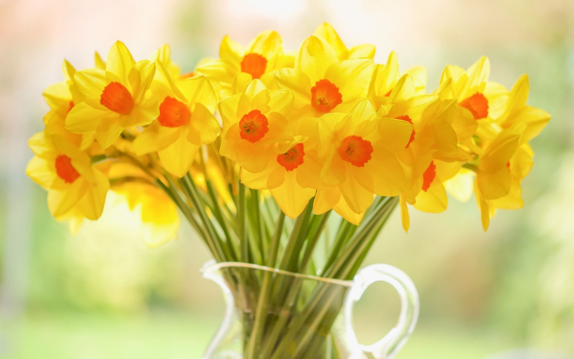 54 Best Free Spring Bouquet Wallpapers Wallpaperaccess