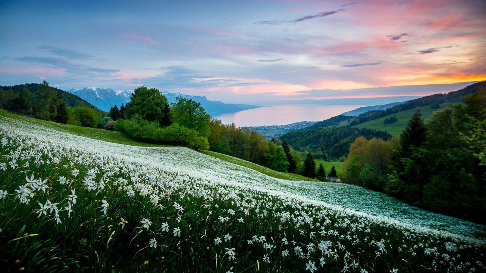 Nature Landscape Wallpapers - Top Free ...