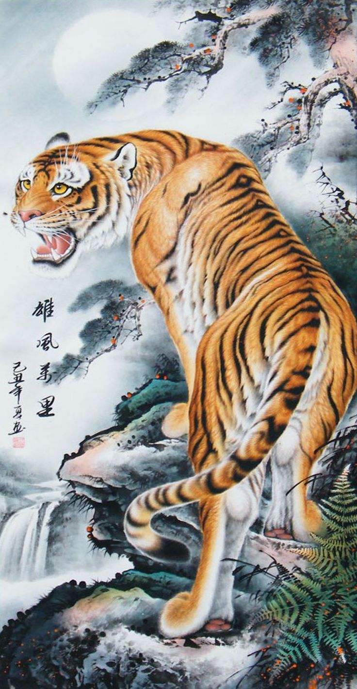 Chinese Dragon and Tiger Wallpapers - Top Free Chinese