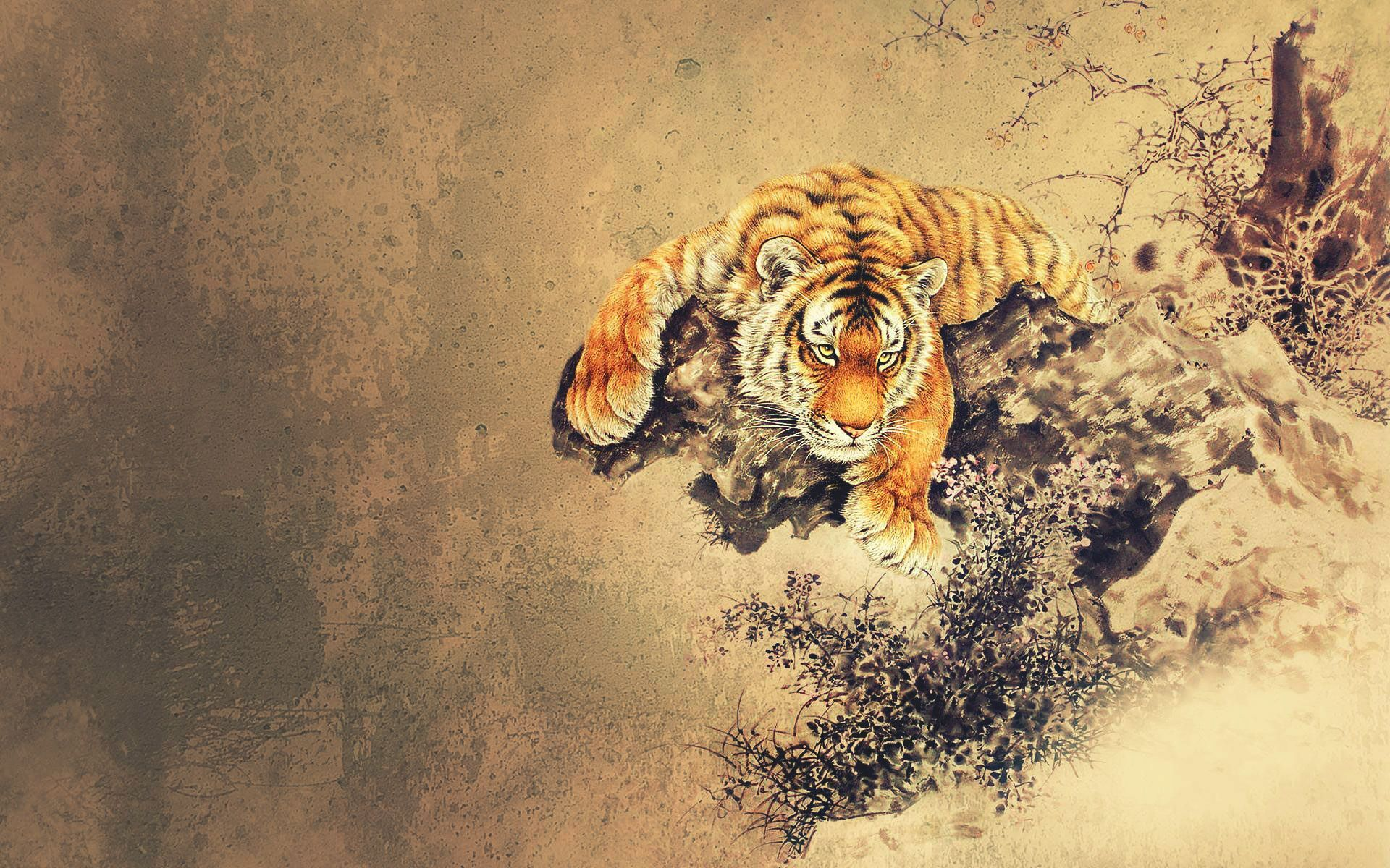 68 Best Free Chinese Dragon And Tiger Wallpapers Wallpaperaccess