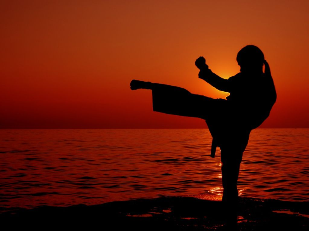 13 Best Free Female Martial Arts Wallpapers