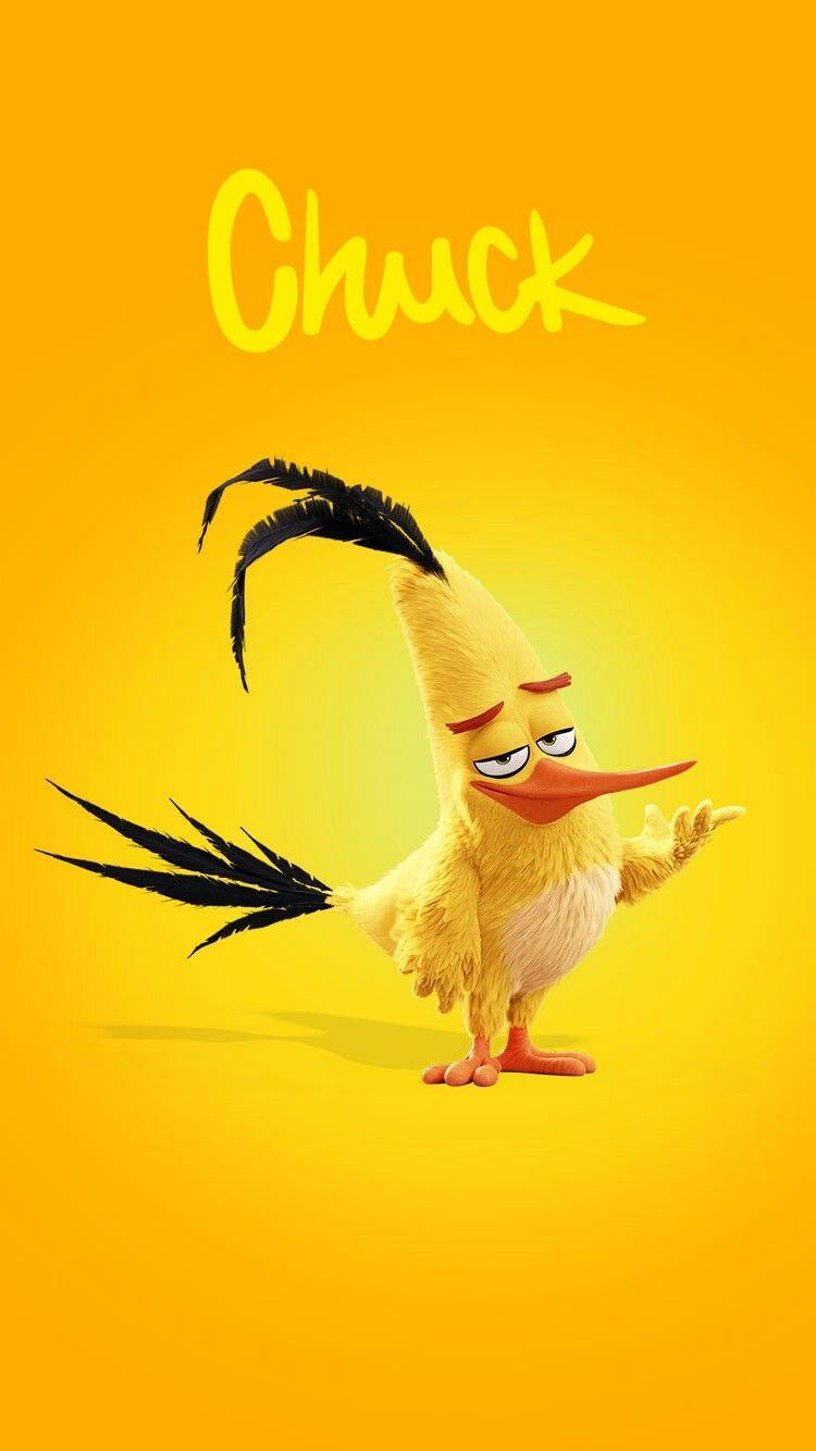 Angry Bird Chuck Wallpapers Top Free Angry Bird Chuck