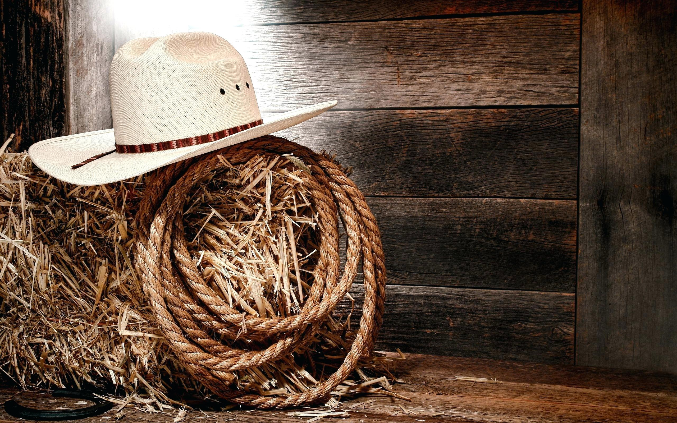 country themed backgrounds , Bazar.balzer,photography.com