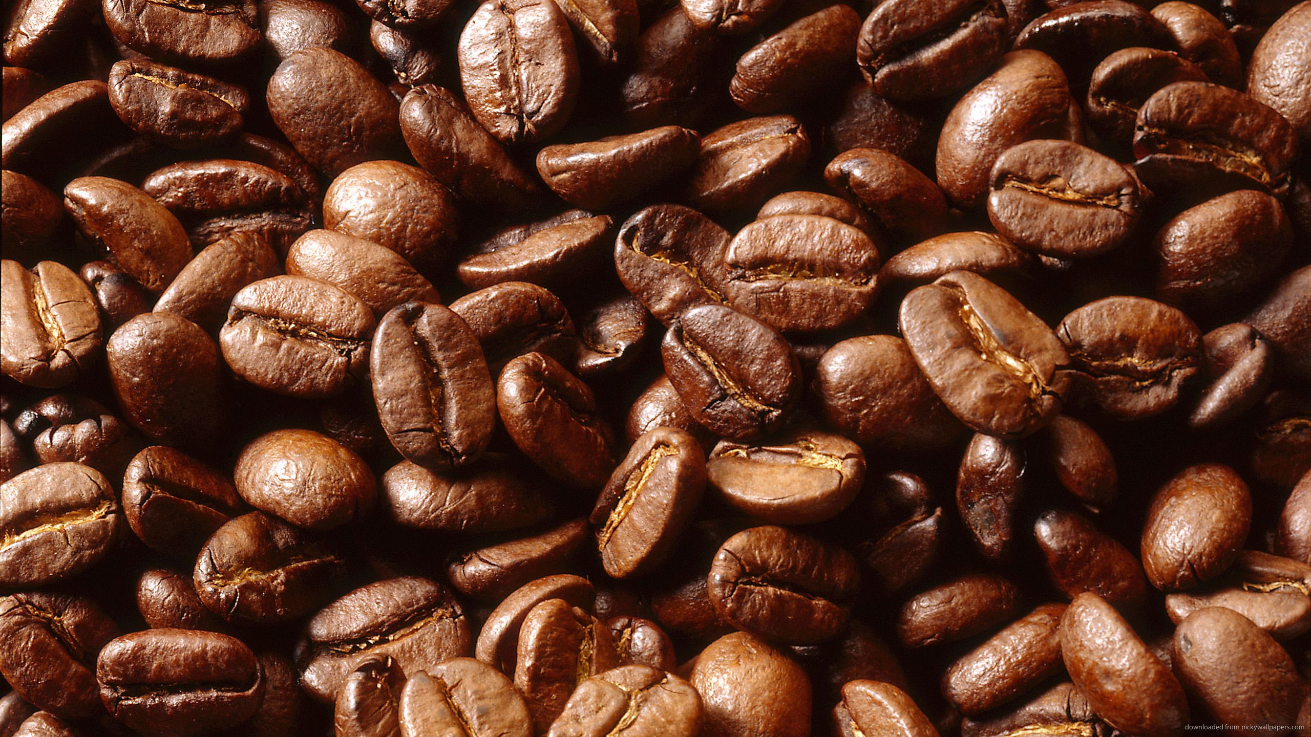 Coffee Beans Wallpapers Top Free Coffee Beans Backgrounds Wallpaperaccess