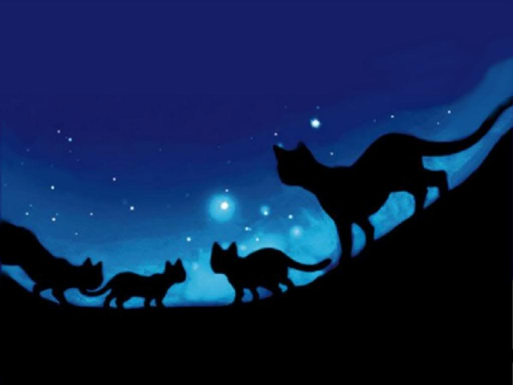 Warrior Cats Wallpapers , Top Free Warrior Cats Backgrounds