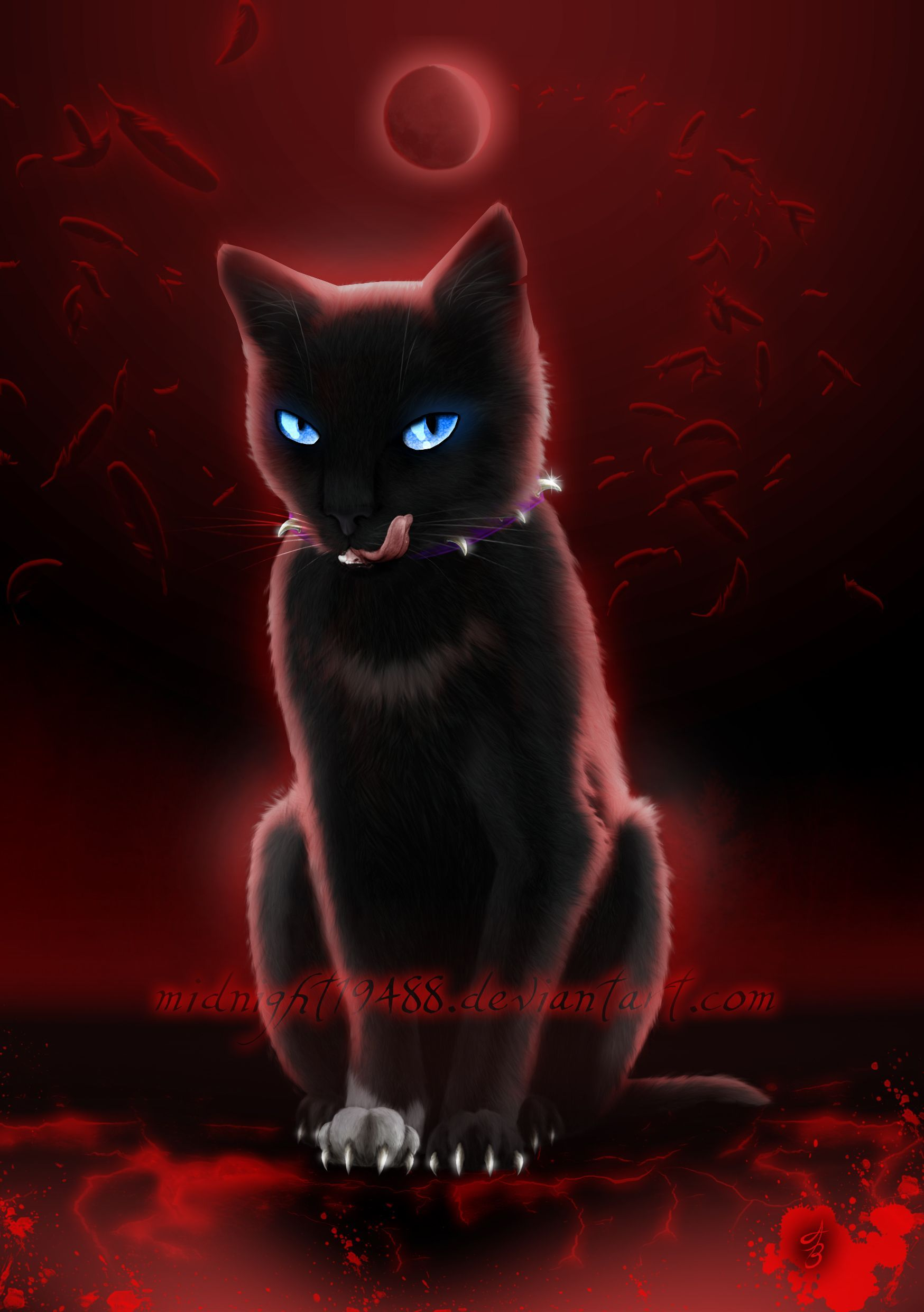 Warrior Cats Wallpapers - Top Free Warrior Cats Backgrounds