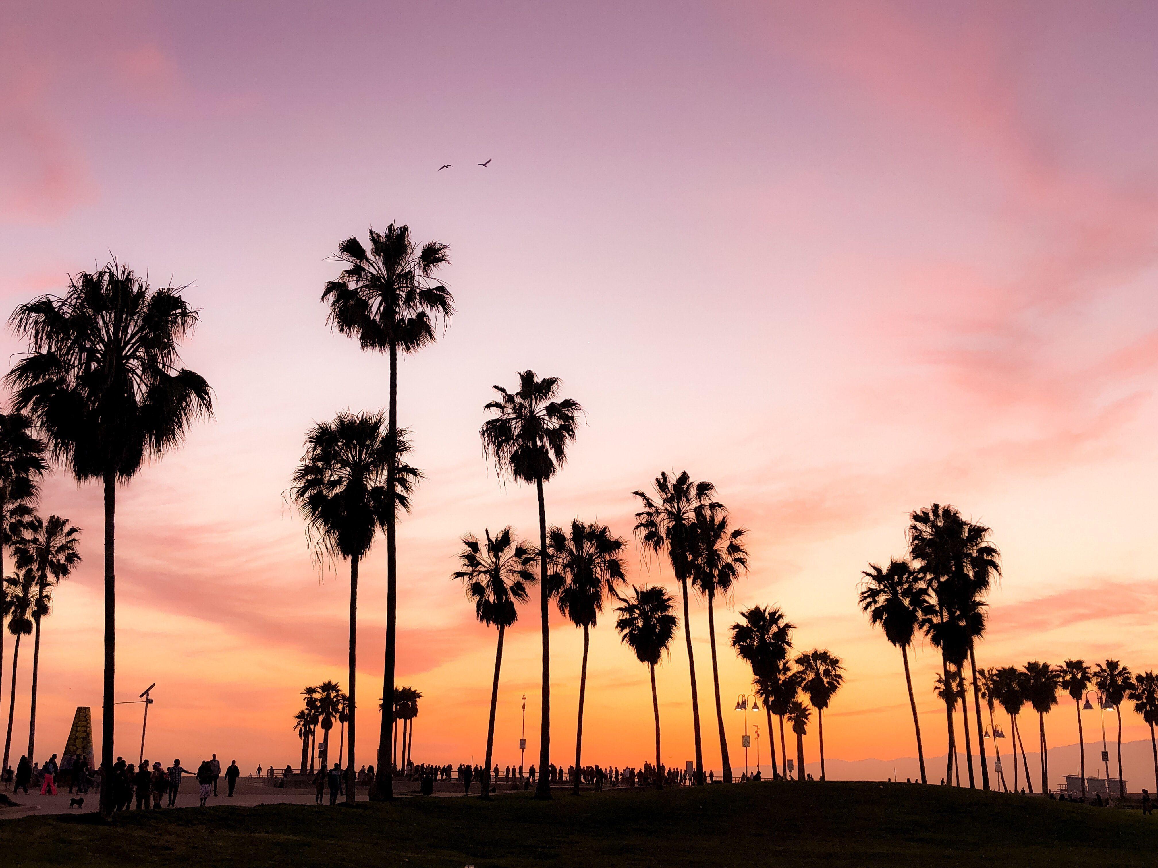 california sunset 4k Wallpapers - Top Free california ...