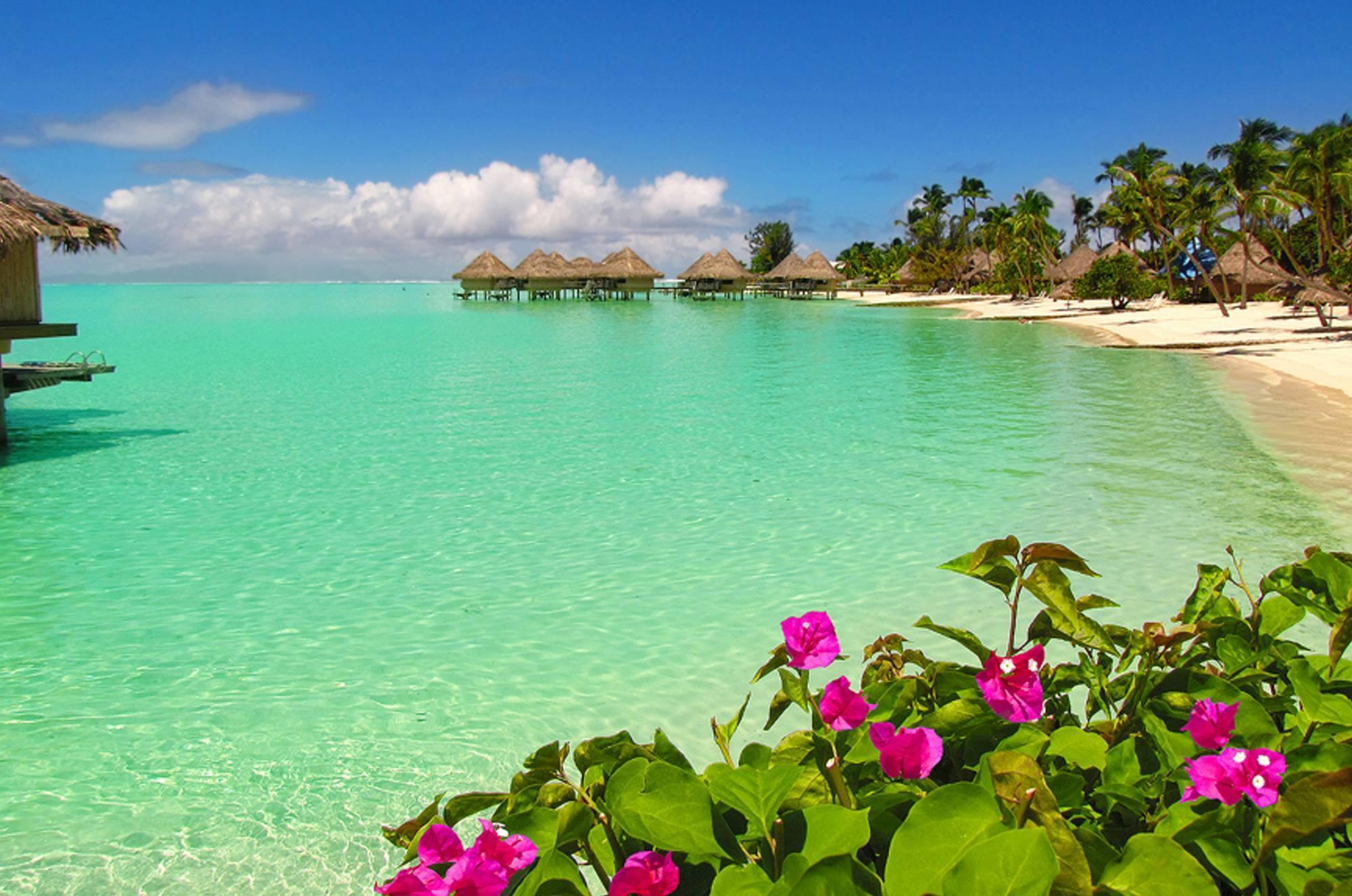 Bora Bora Bungalows 4k Hd Desktop Wallpaper For Wide: Top Free Bora Bora Backgrounds
