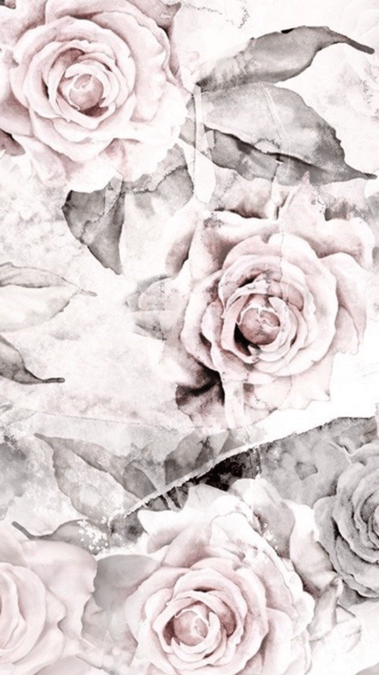 Floral Phone Wallpapers Top Free Floral Phone Backgrounds
