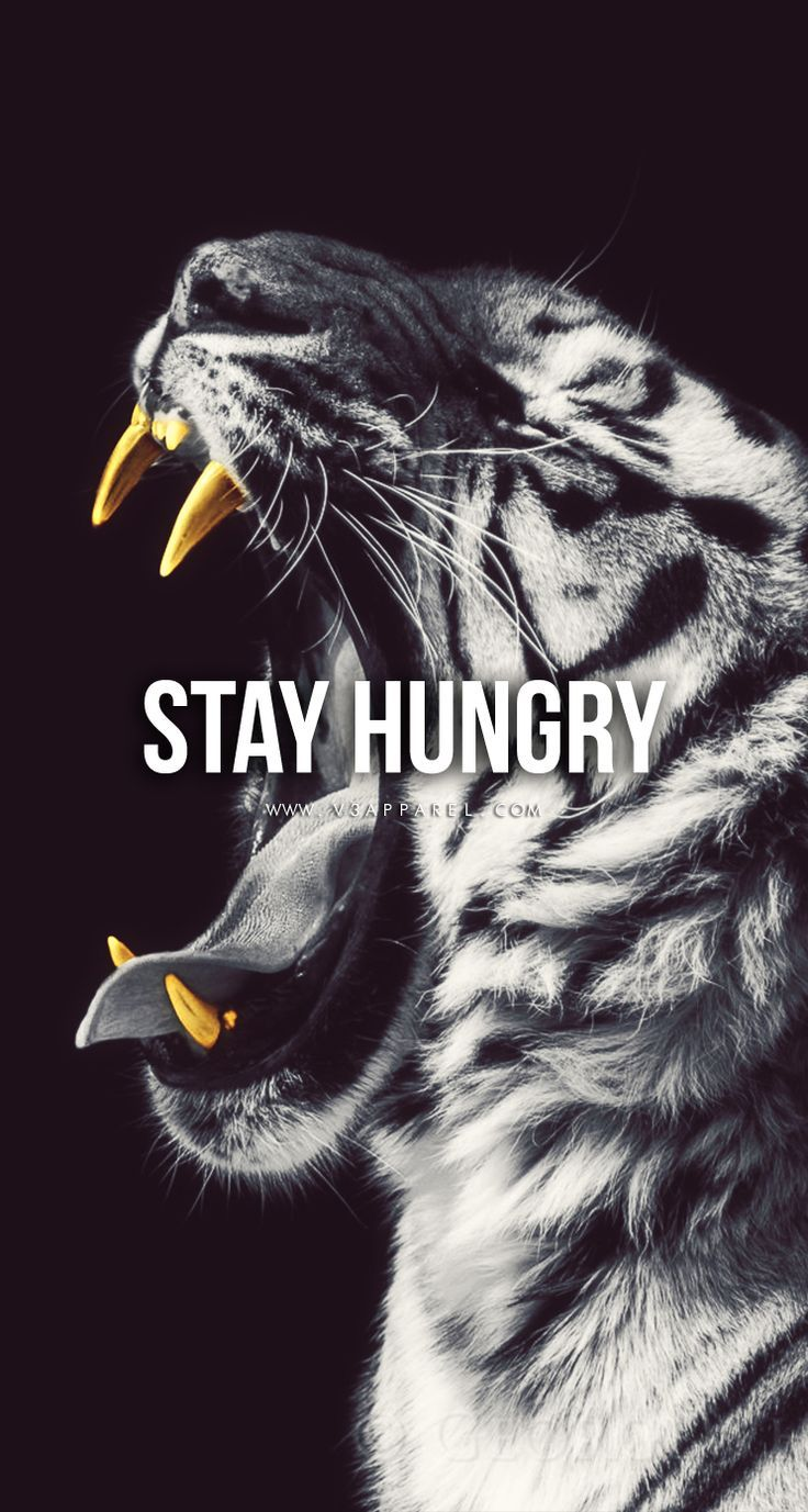 Motivational Iphone Wallpapers Top Free Motivational