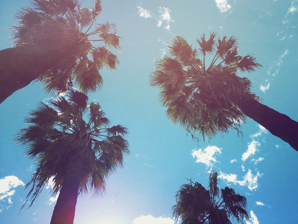Summer Vibes Wallpapers Top Free Summer Vibes Backgrounds Wallpaperaccess