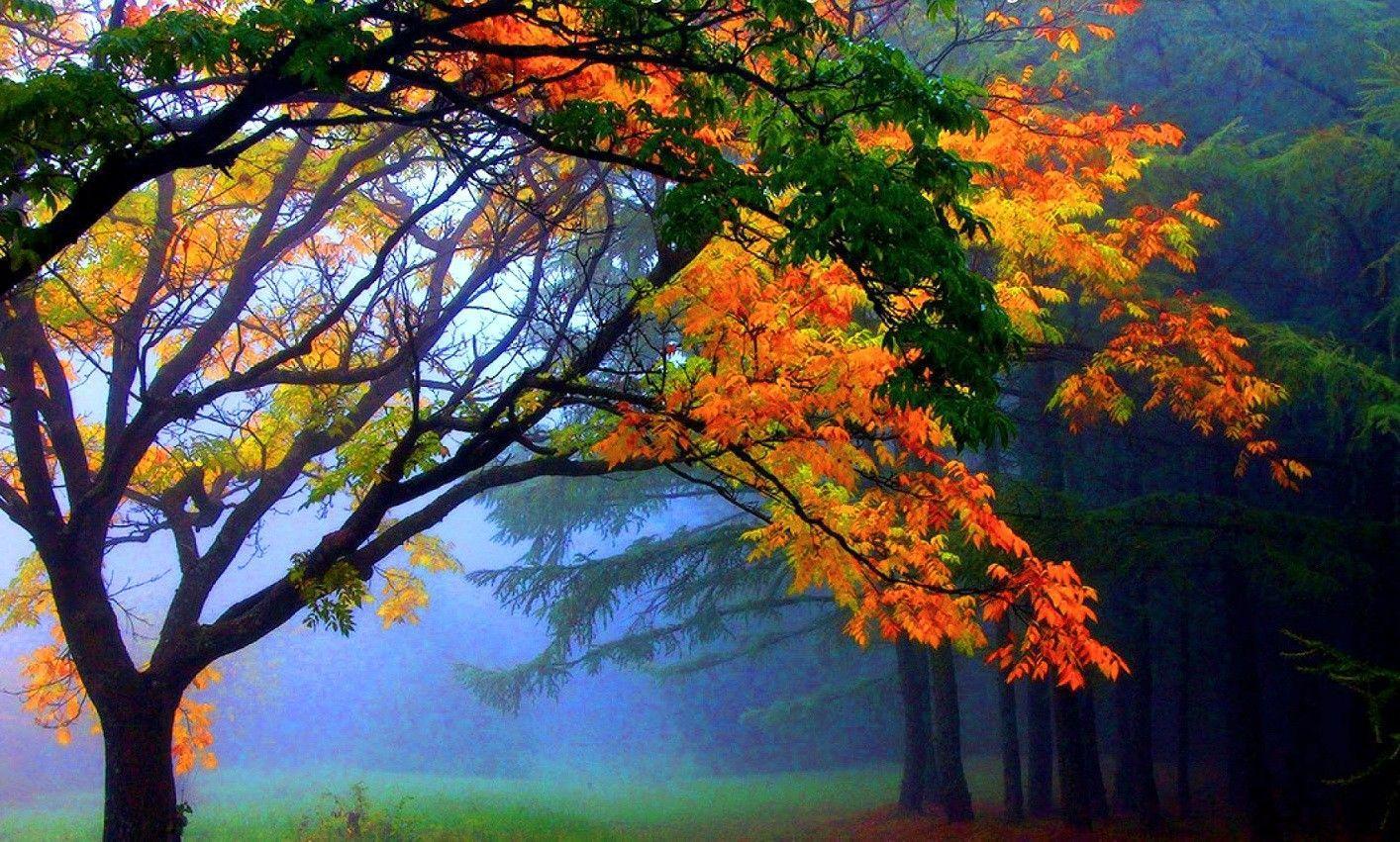 October Scenery Wallpapers - Top Free October Scenery ...