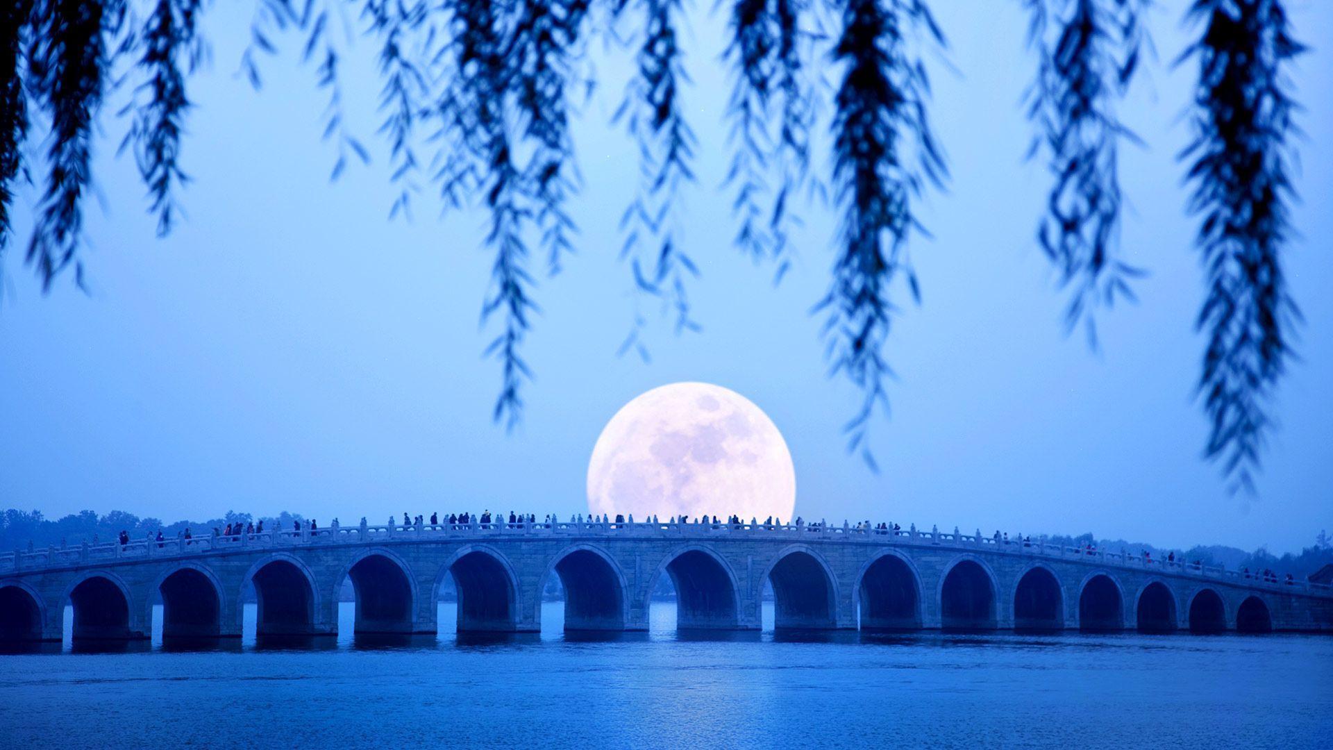 Top Free Bing Moon Backgrounds