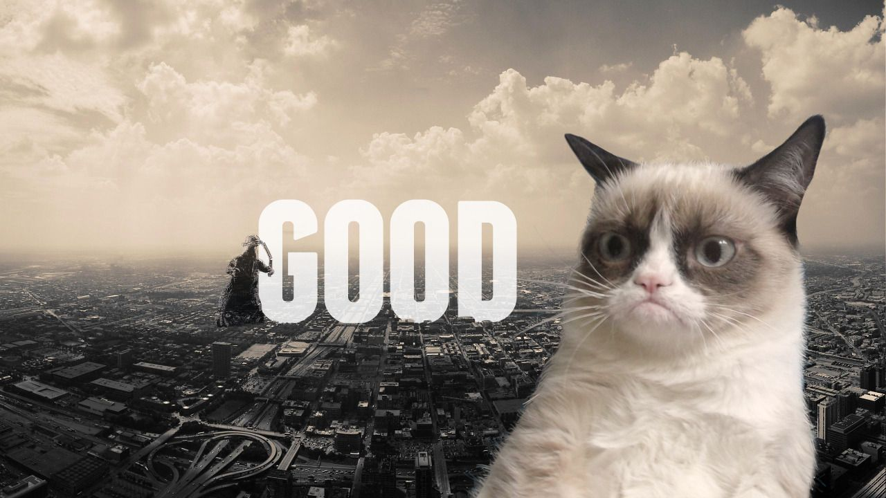 Top Free Grumpy Cat Backgrounds