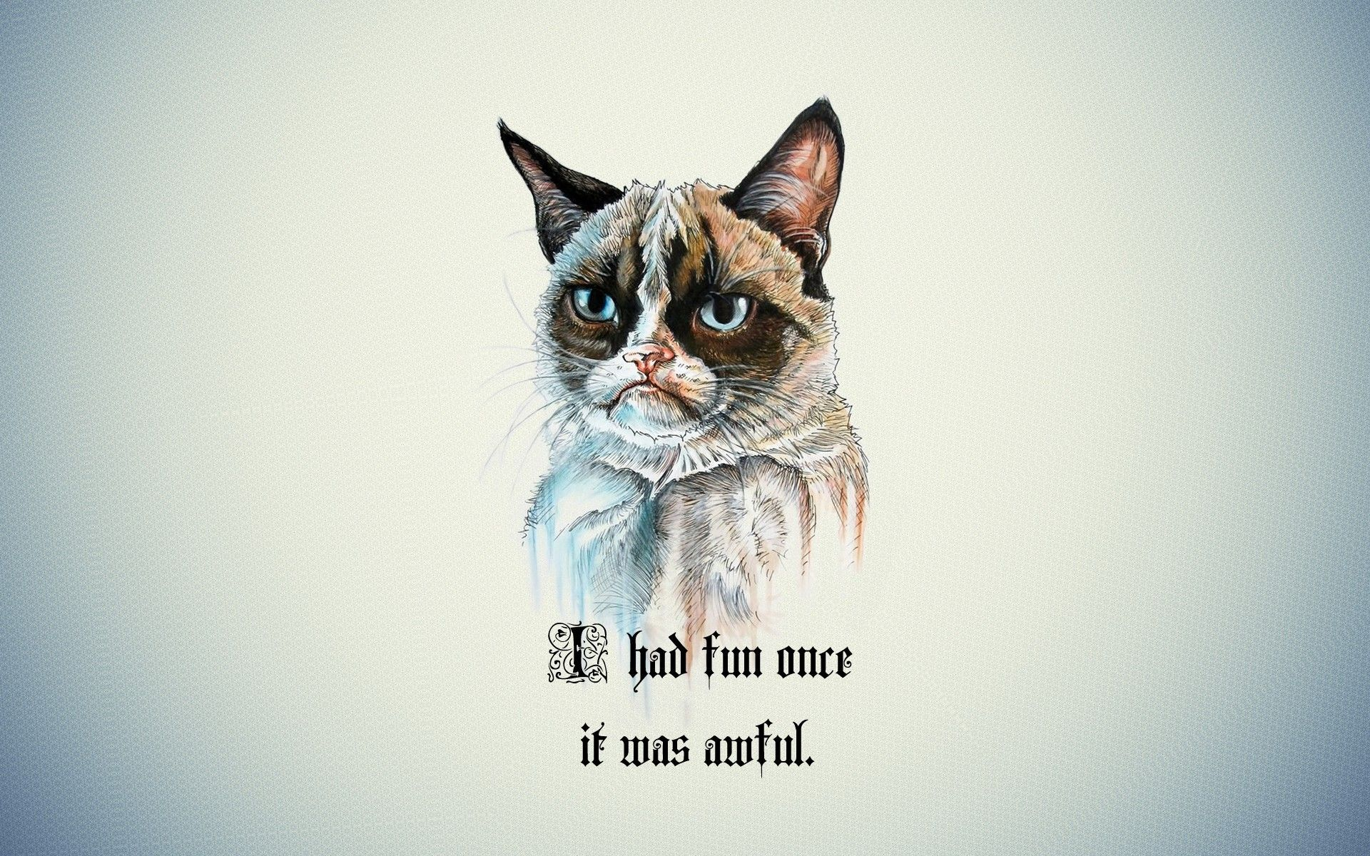 1920x1080 Grumpy Cat Dreaming To The Moon Wallpaper Pc Background