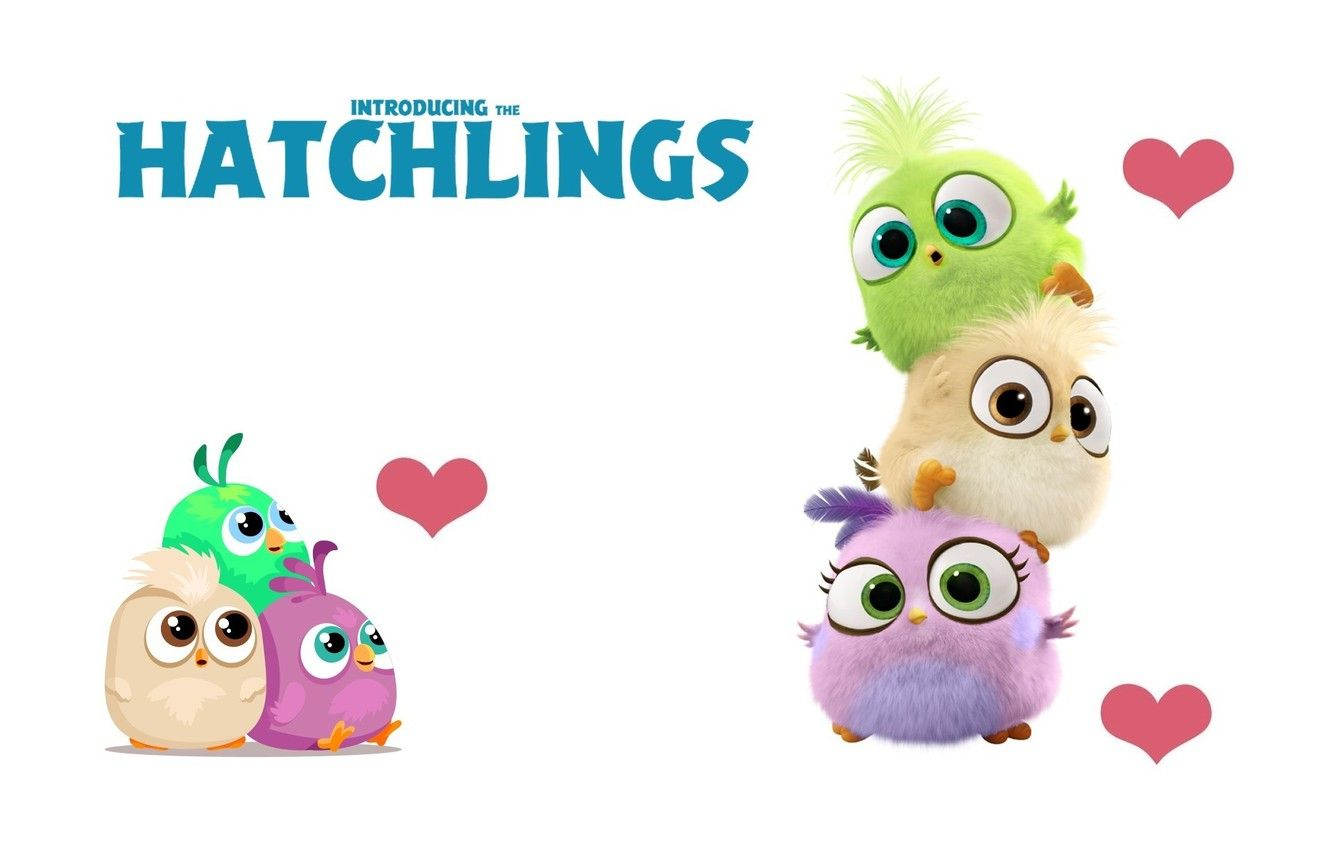 Hatchlings Wallpapers Top Free Hatchlings Backgrounds Wallpaperaccess