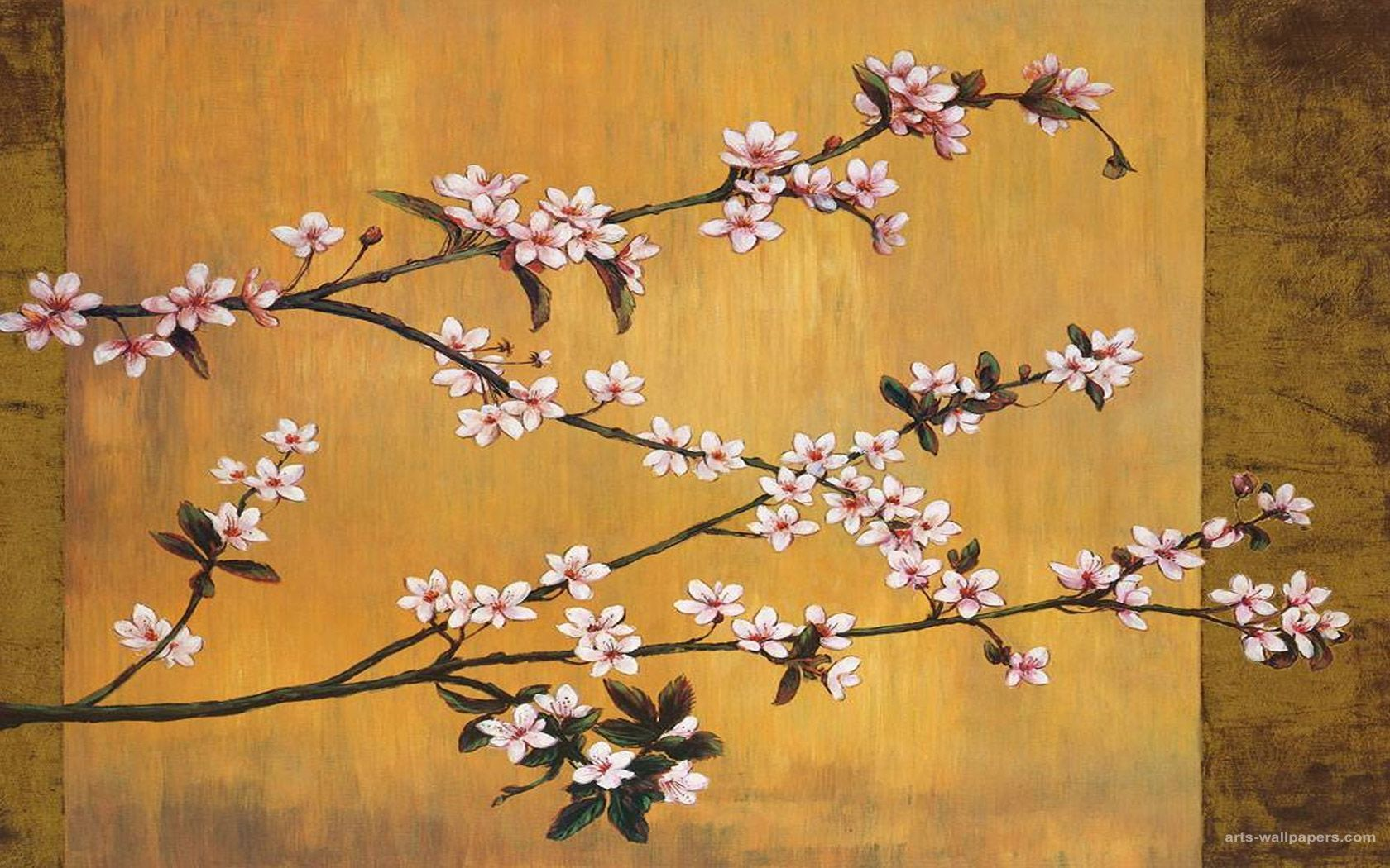 Japanese Cherry Blossom Art Wallpapers Top Free Japanese Cherry
