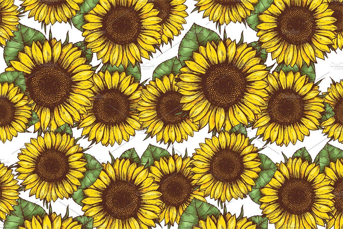 Sunflower Drawing Wallpapers - Top Free Sunflower Drawing ...