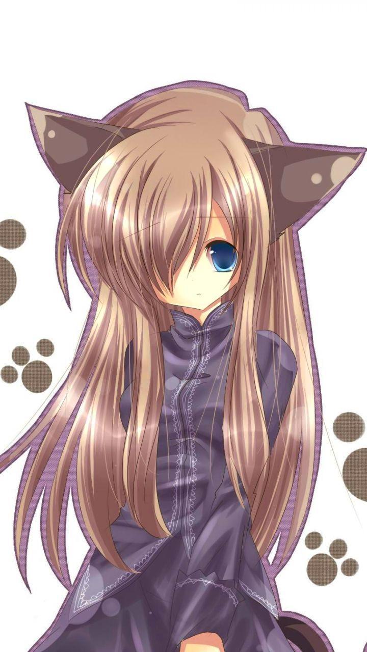 Anime Neko Girl Wallpapers Top Free Anime Neko Girl Backgrounds