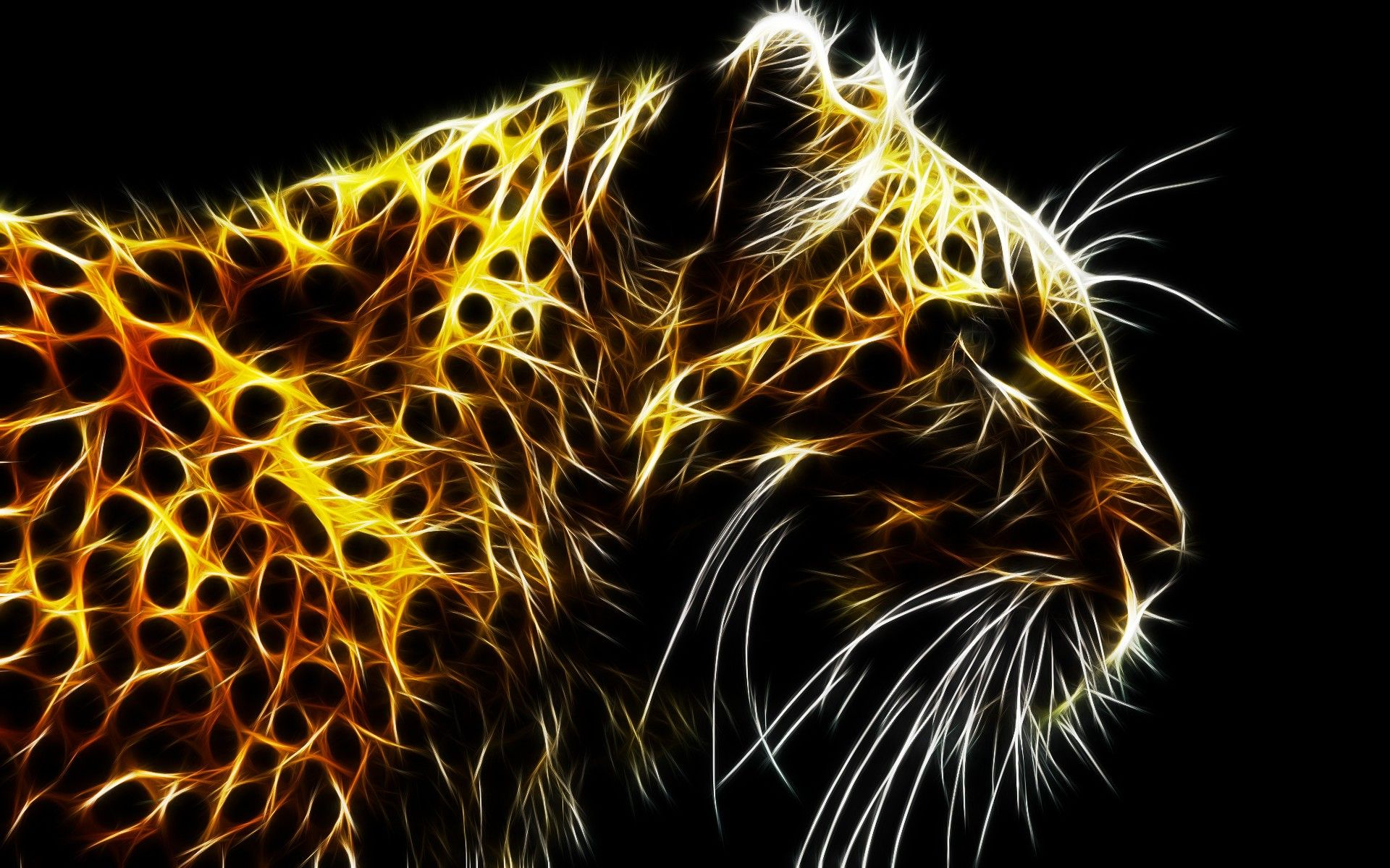 Swell Abstract Animal Wallpapers Top Free Abstract Animal Download Free Architecture Designs Embacsunscenecom