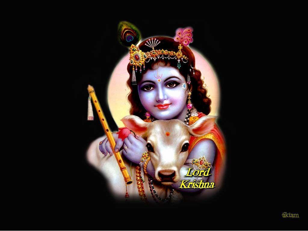 Lord Krishna 3d Wallpapers Top Free Lord Krishna 3d Backgrounds Wallpaperaccess