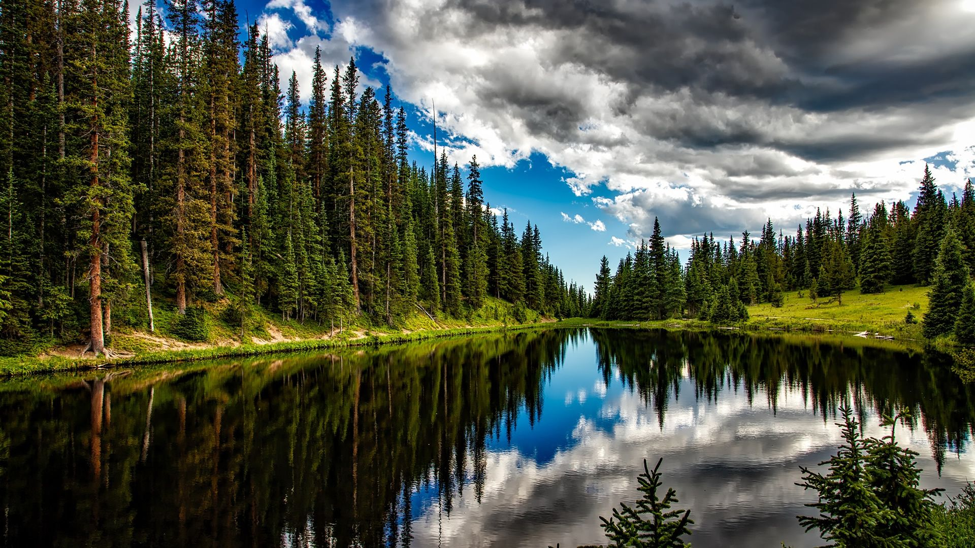 Forest Lake Wallpapers Top Free Forest Lake Backgrounds Wallpaperaccess