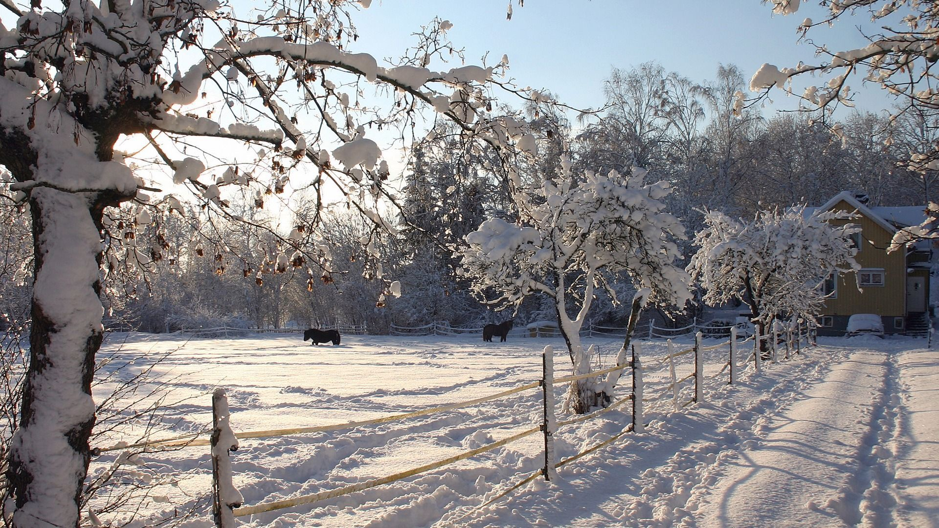 Winter Farm Wallpapers Top Free Winter Farm Backgrounds Wallpaperaccess
