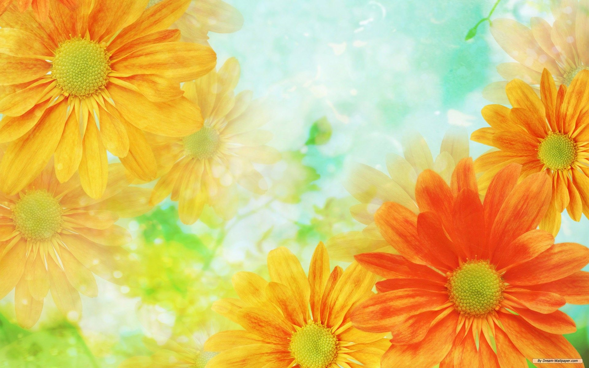 Hipster Flowers Wallpapers Top Free Hipster Flowers
