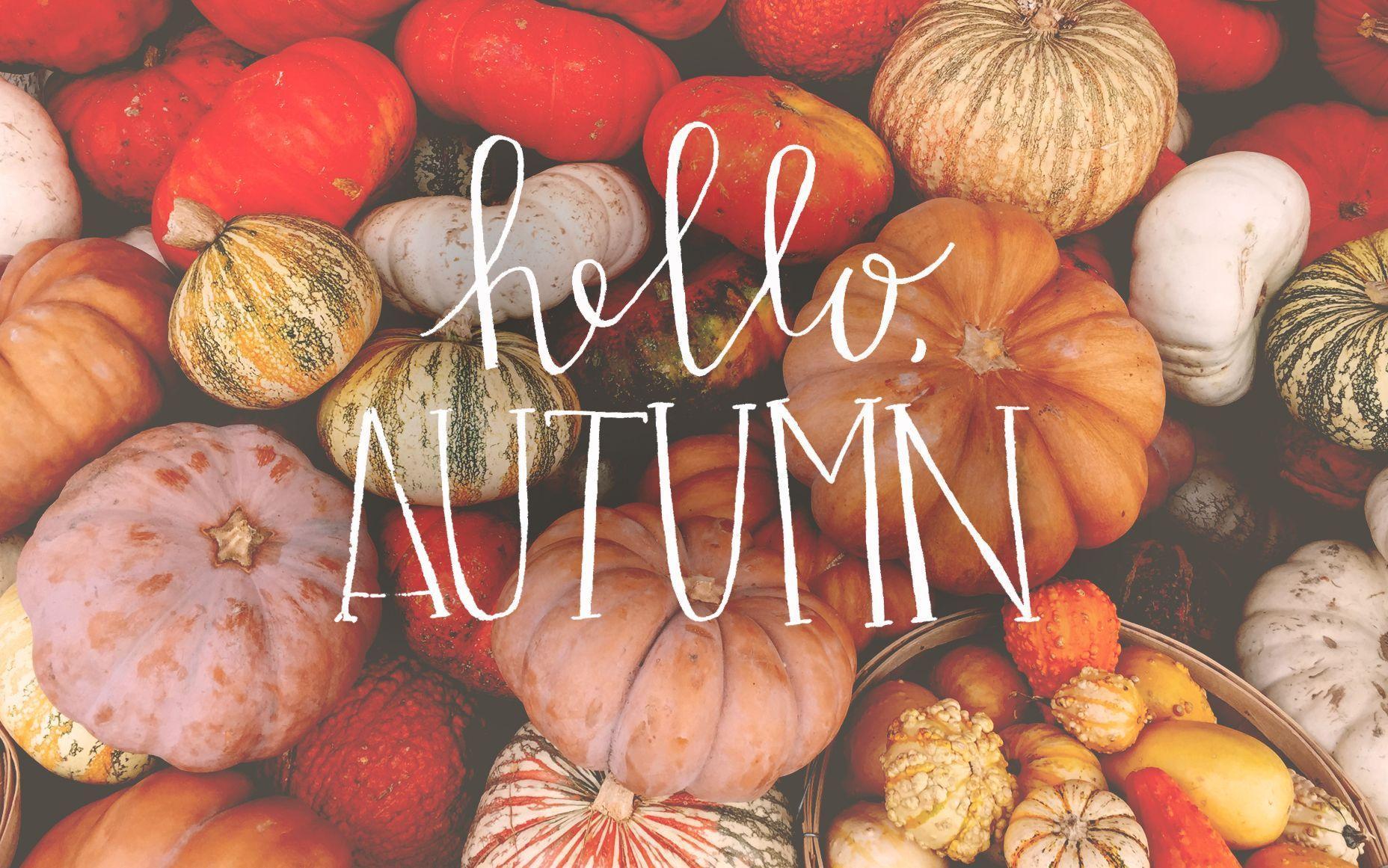 Tumblr Autumn Laptop Wallpapers Top Free Tumblr Autumn Laptop Backgrounds Wallpaperaccess