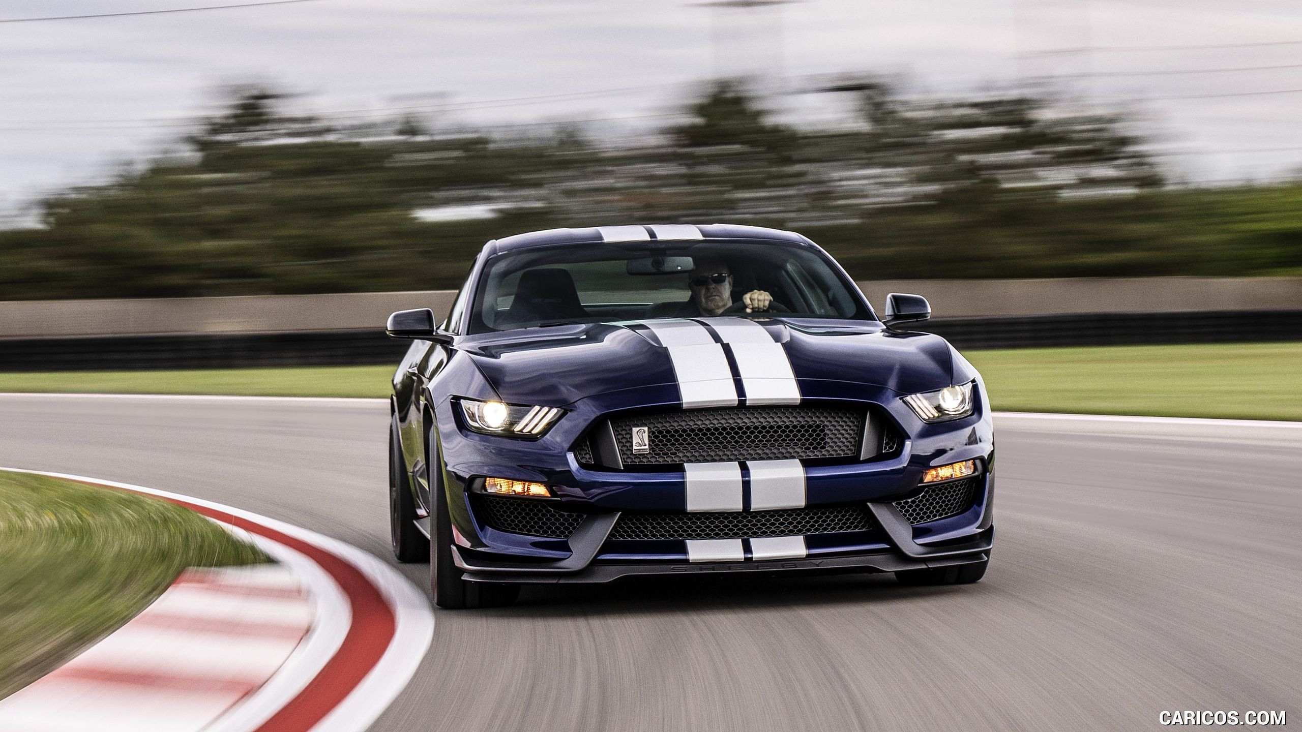 Ford Shelby Gt350 Wallpapers Top Free Ford Shelby Gt350 Backgrounds Wallpaperaccess